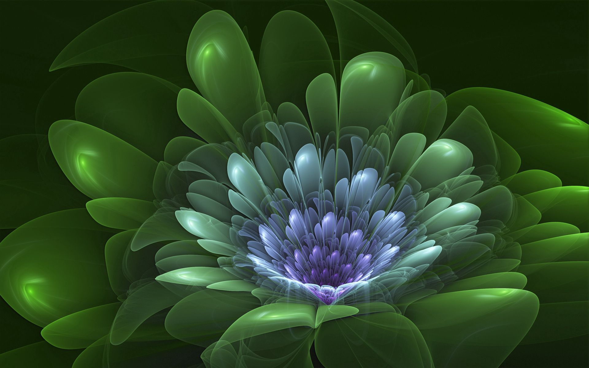 143498 download wallpaper Abstract, Flower, Petals, Shroud, Shine, Light screensavers and pictures for free