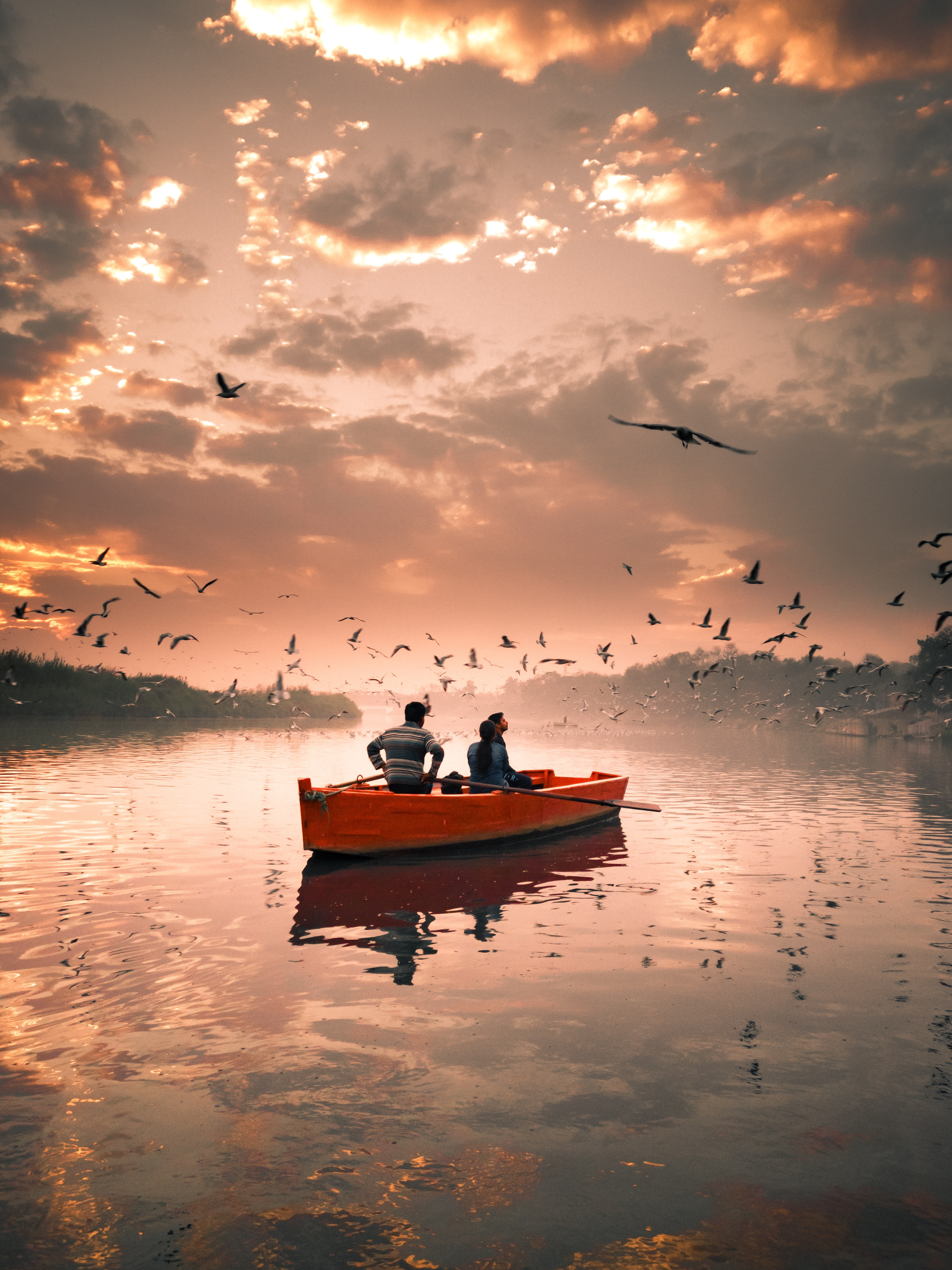 51261 download wallpaper Birds, Nature, Rivers, Sky, Seagulls, Clouds, Stroll, Boat screensavers and pictures for free