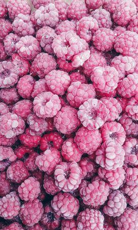 118658 télécharger le fond d'écran Nourriture, Framboise, Baie, Baies, Le Fruit, Fruit, Désert - économiseurs d'écran et images gratuitement
