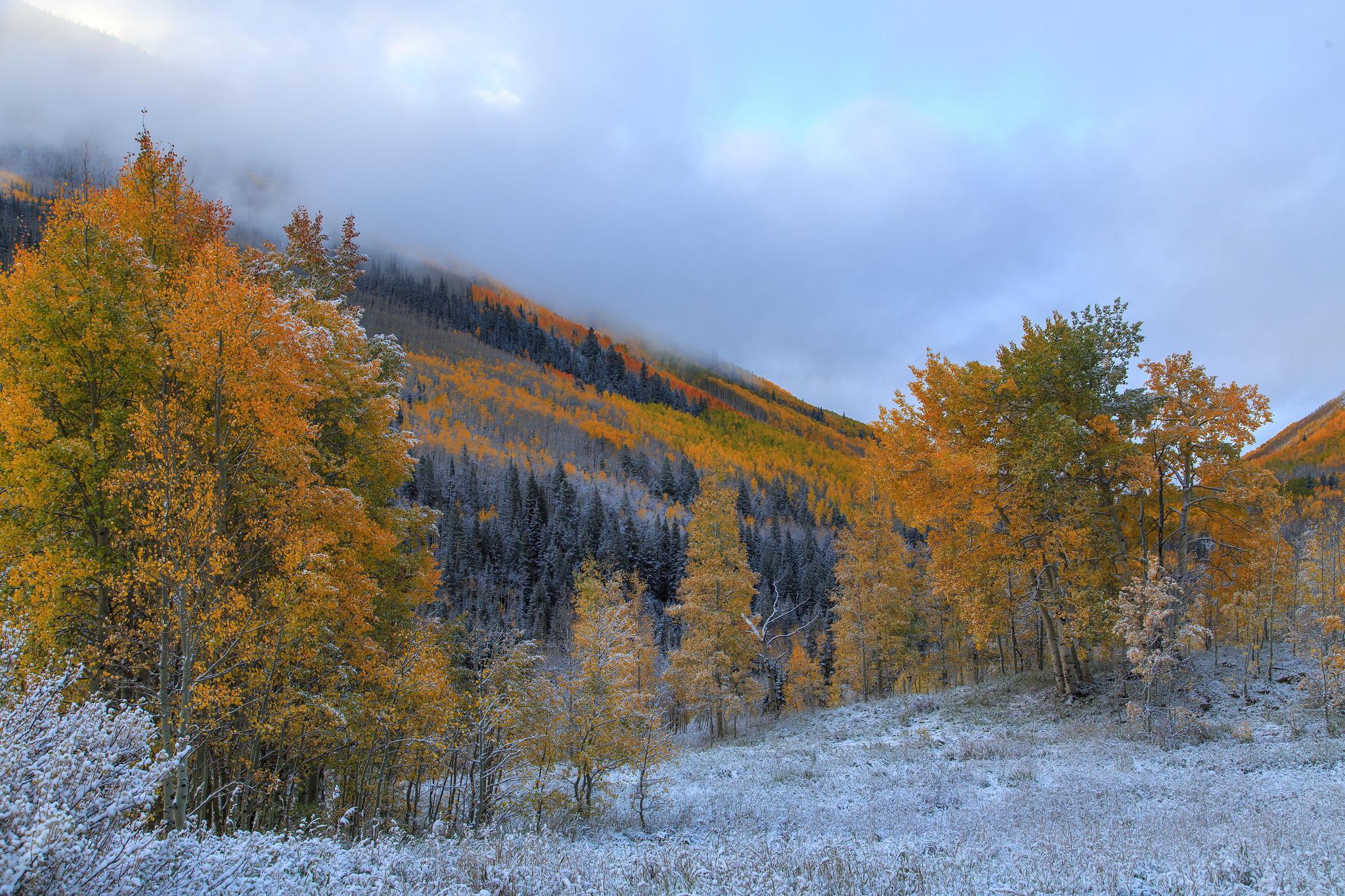 134773 скачать обои Природа, Деревья, Иней, Осень, Горы - заставки и картинки бесплатно