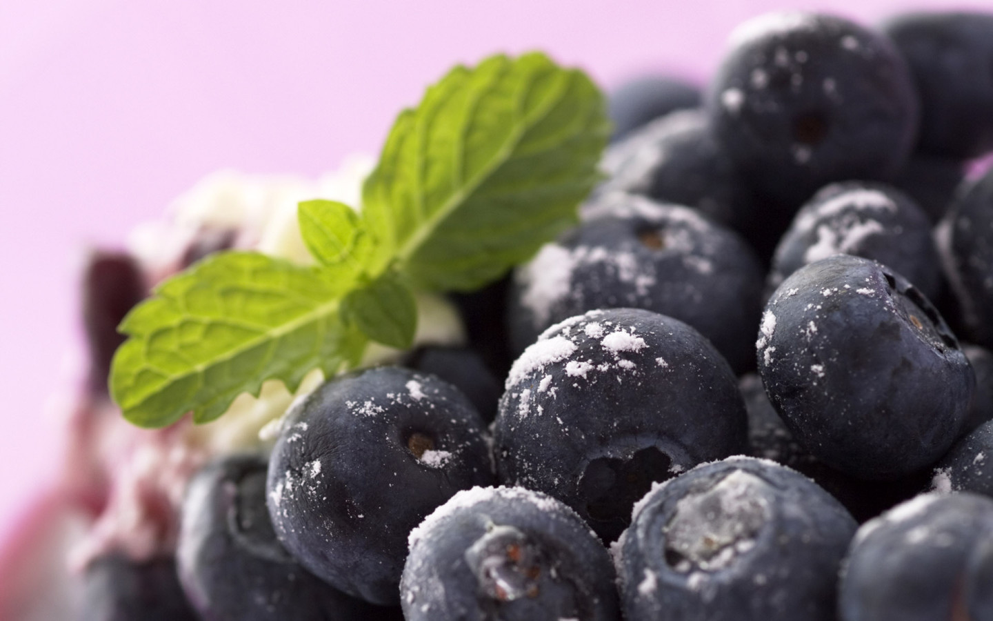 2176 download wallpaper Fruits, Food, Bilberries, Berries screensavers and pictures for free