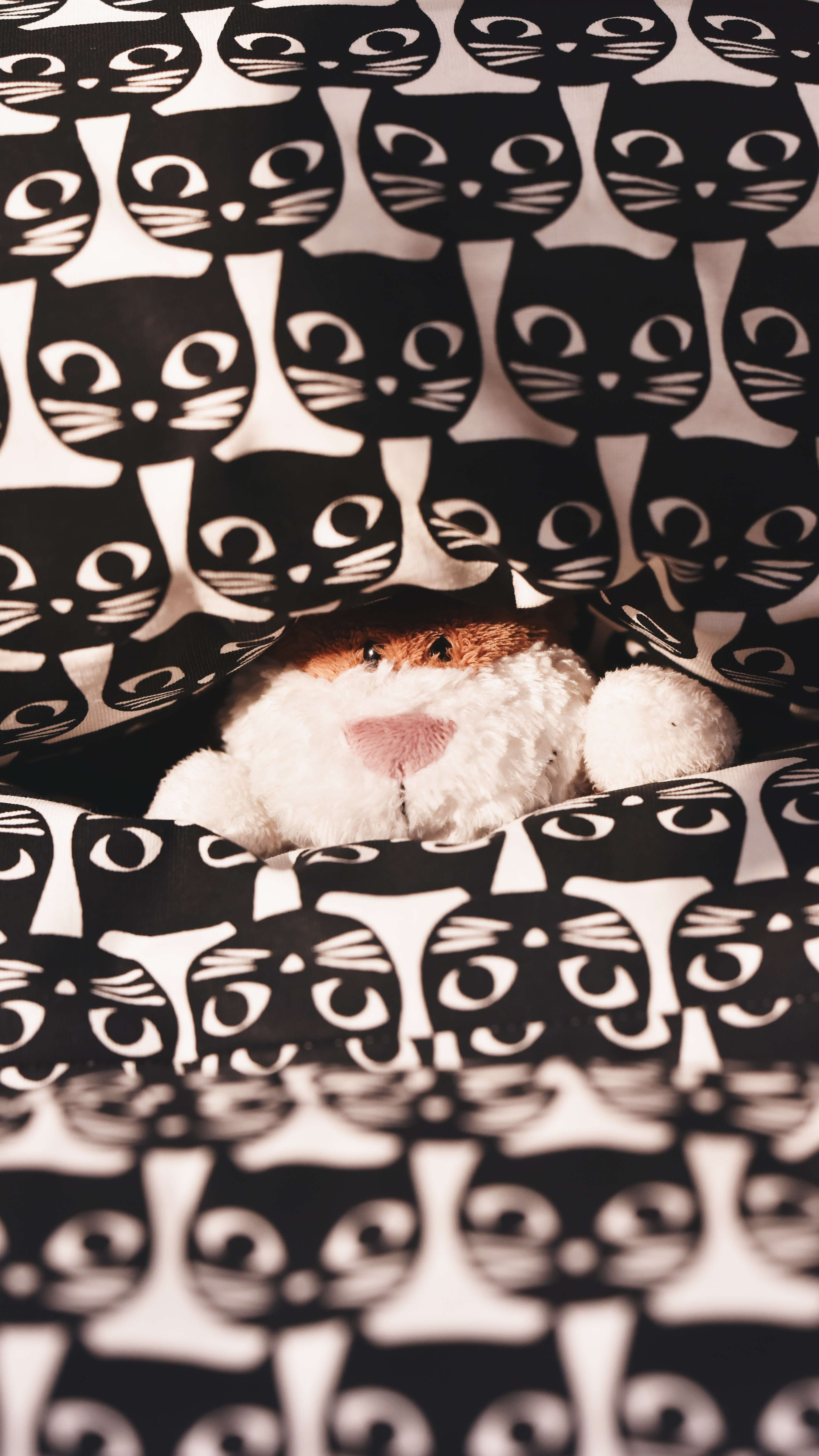 77639 download wallpaper Miscellanea, Miscellaneous, Toy, Plush, Peek Out, Look Out, Pattern, Cats screensavers and pictures for free