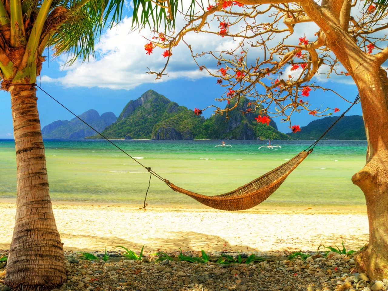 23313 download wallpaper Landscape, Sea, Beach, Palms screensavers and pictures for free