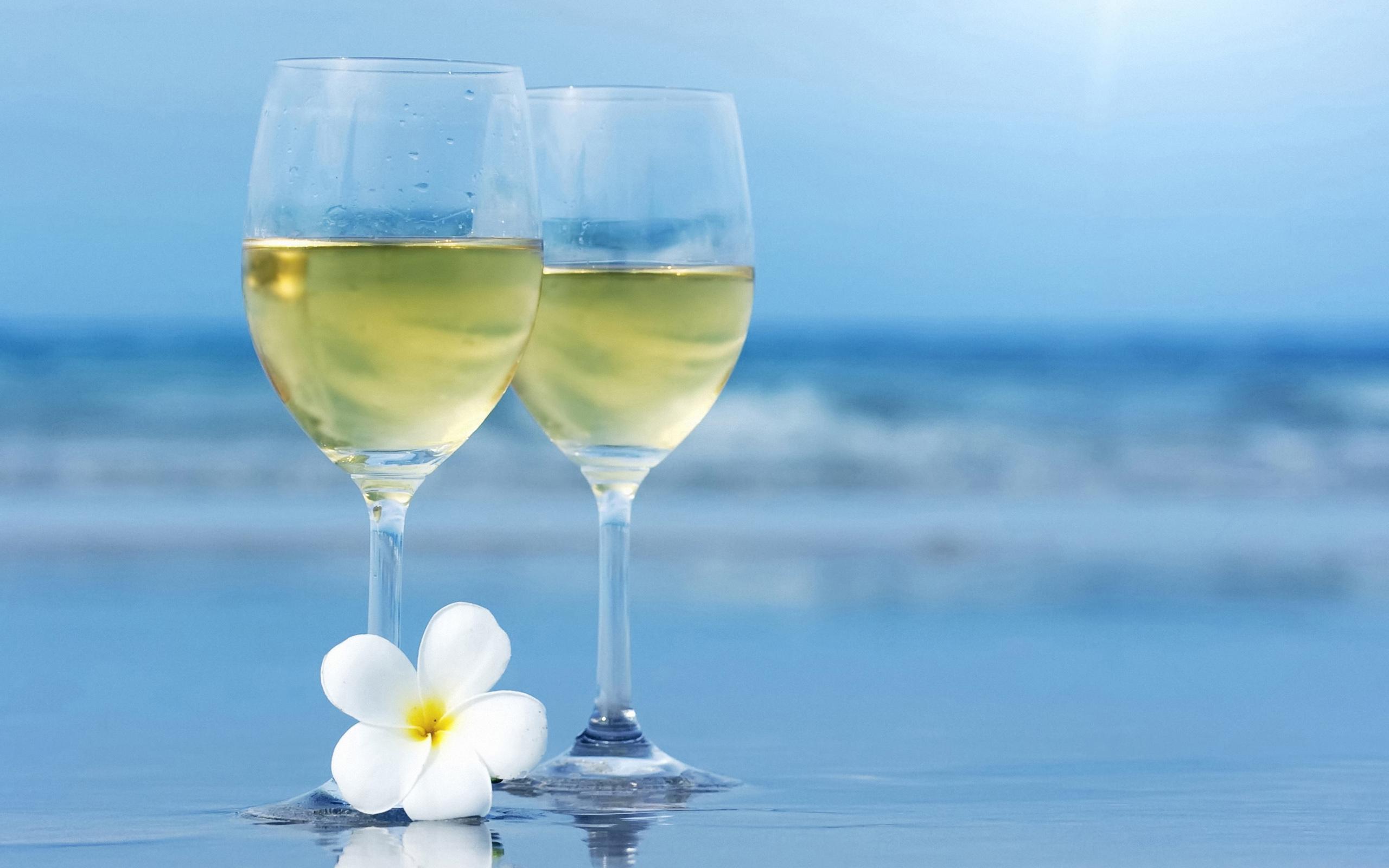 23061 скачать обои Еда, Вино, Напитки - заставки и картинки бесплатно