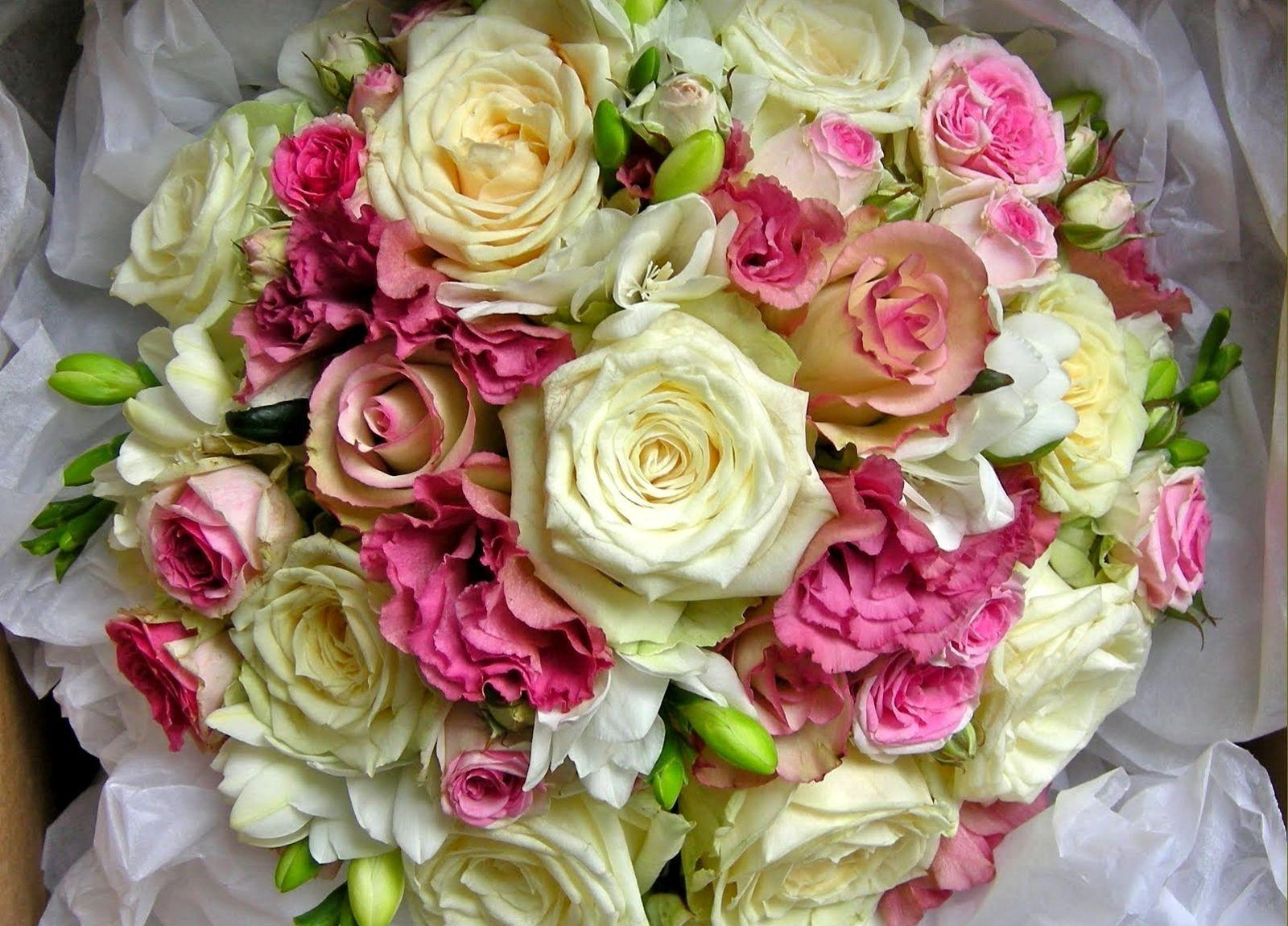 105276 download wallpaper Flowers, Roses, Registration, Typography, Bouquet, Handsomely, It's Beautiful screensavers and pictures for free