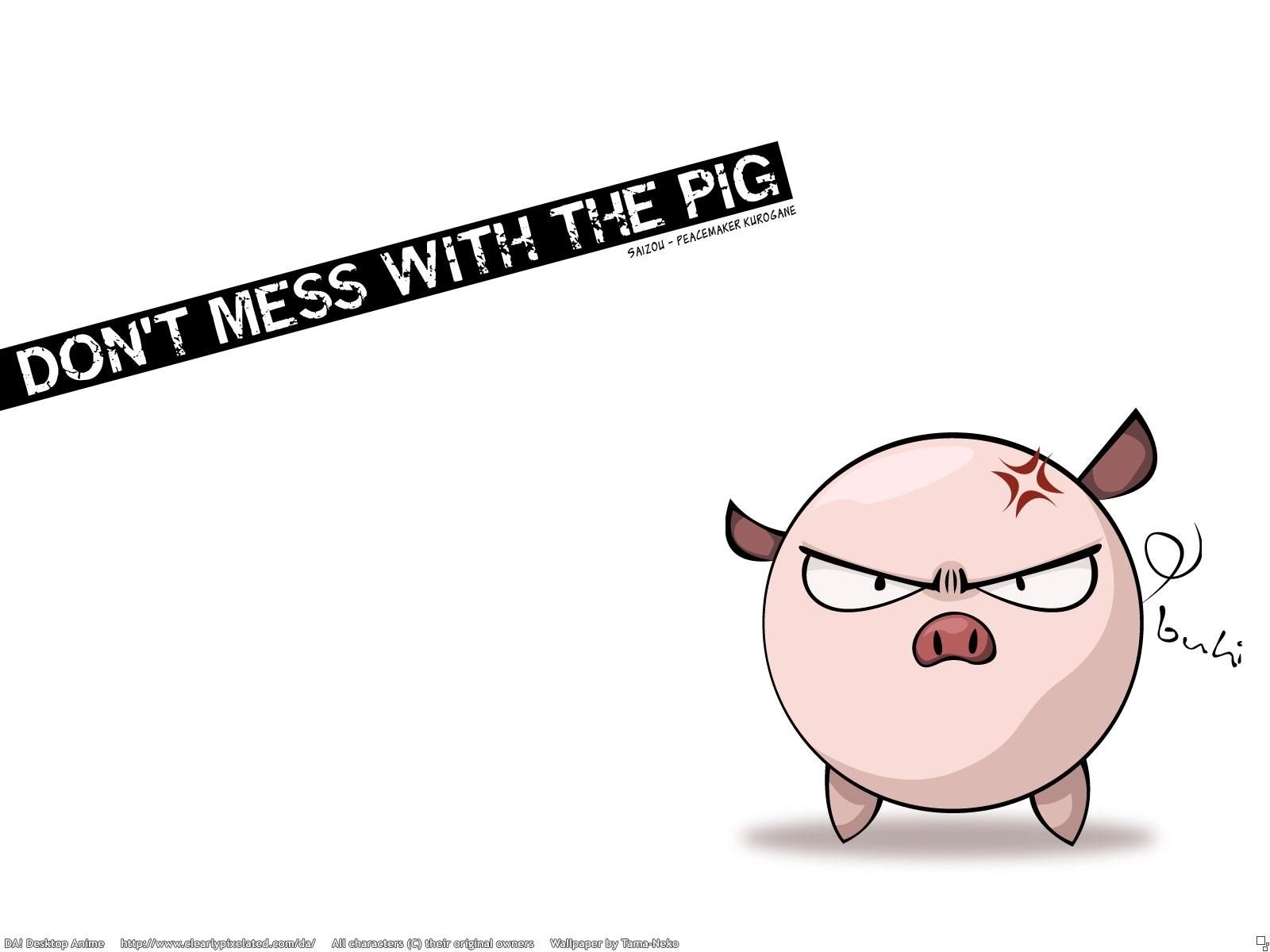 5542 descargar fondo de pantalla Imágenes, Pigs: protectores de pantalla e imágenes gratis