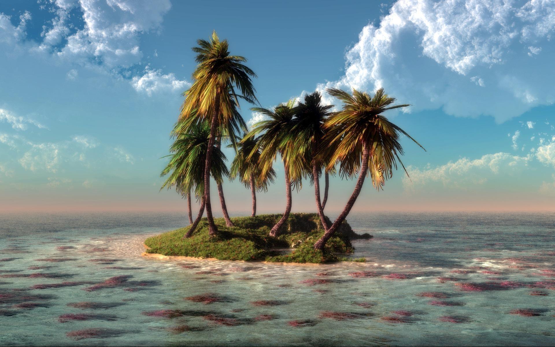 28907 скачать обои Пейзаж, Море, Пальмы - заставки и картинки бесплатно