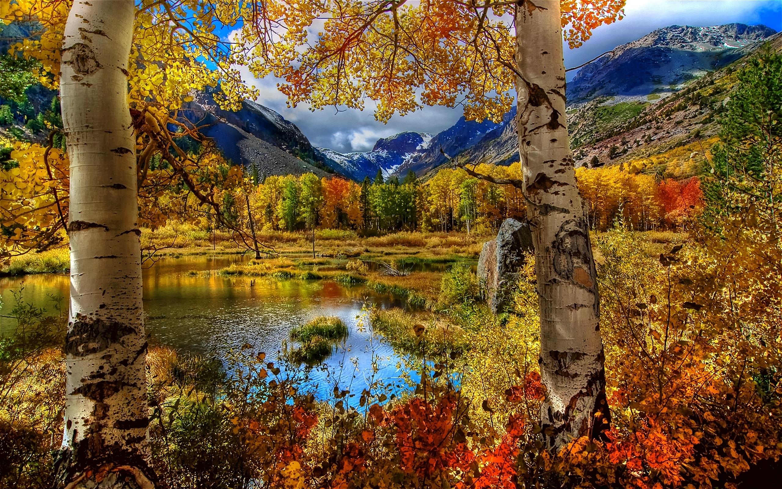 24418 скачать обои Пейзаж, Река, Деревья, Горы, Осень, Березы - заставки и картинки бесплатно