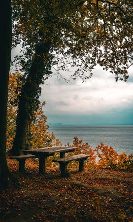103455 скачать обои Природа, Осень, Скамейки, Стол, Море, Берег, Деревья, Листва - заставки и картинки бесплатно