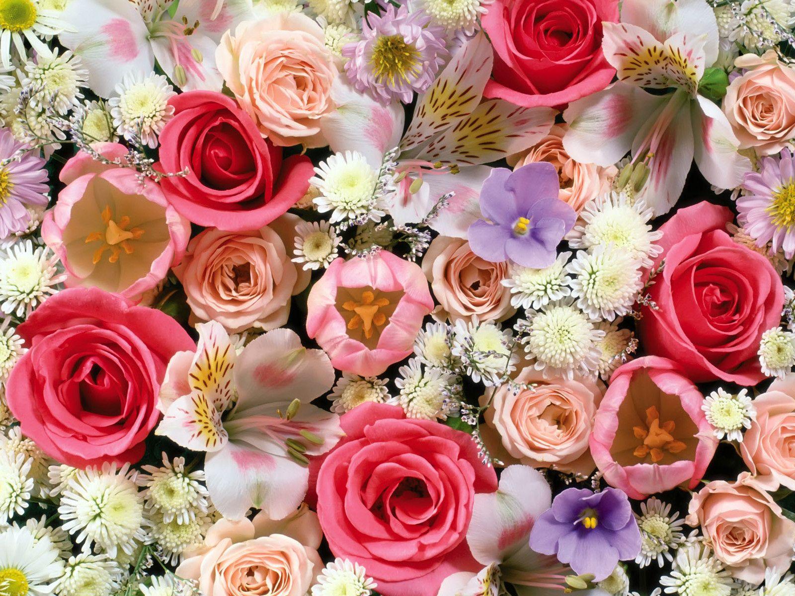 52603 скачать обои Цветы, Лилии, Ассорти, Тюльпаны, Розы - заставки и картинки бесплатно