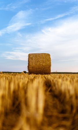 157546 скачать обои Природа, Стог, Поле, Сено, Сухой, Пшеница - заставки и картинки бесплатно