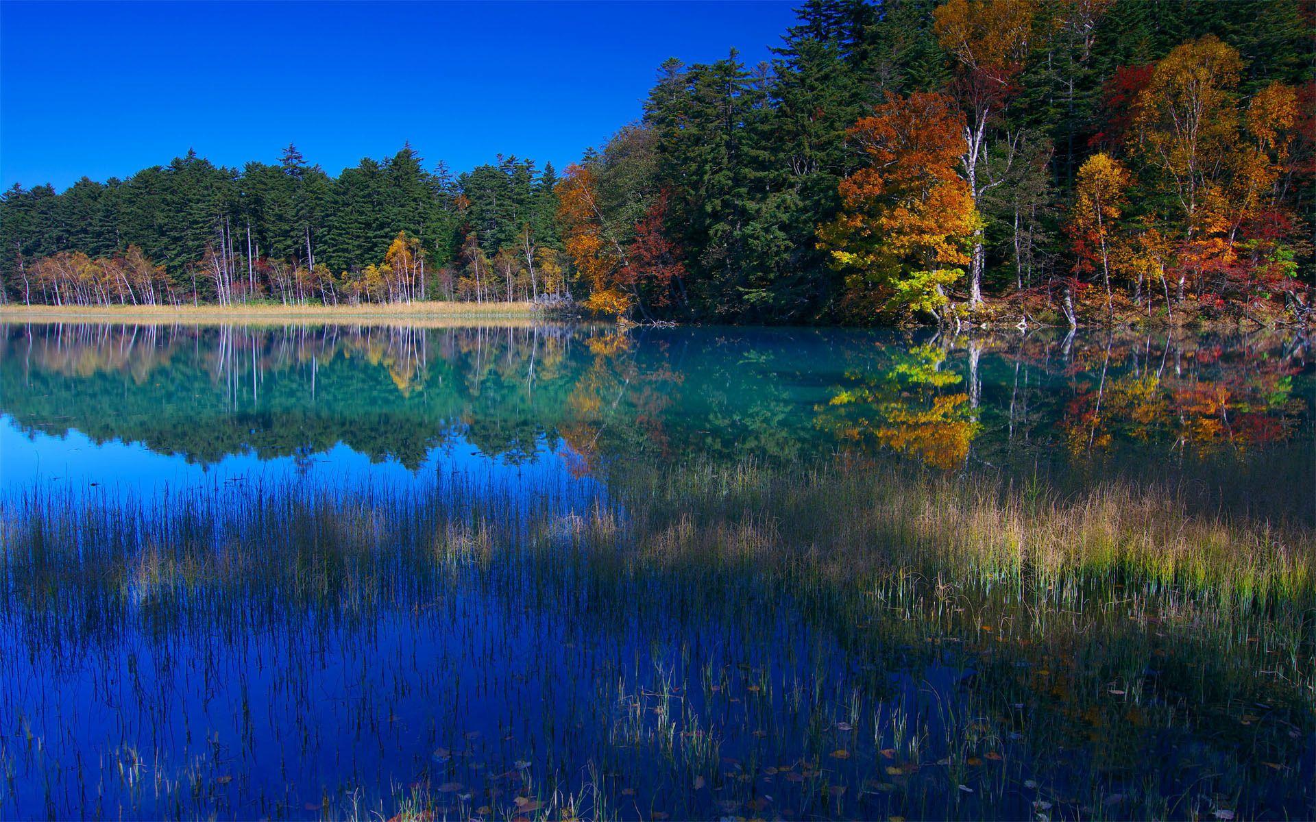 136258 скачать обои Природа, Вода, Деревья, Трава, Небо, Озеро, Отражение, Берег, Голубой, Сентябрь - заставки и картинки бесплатно