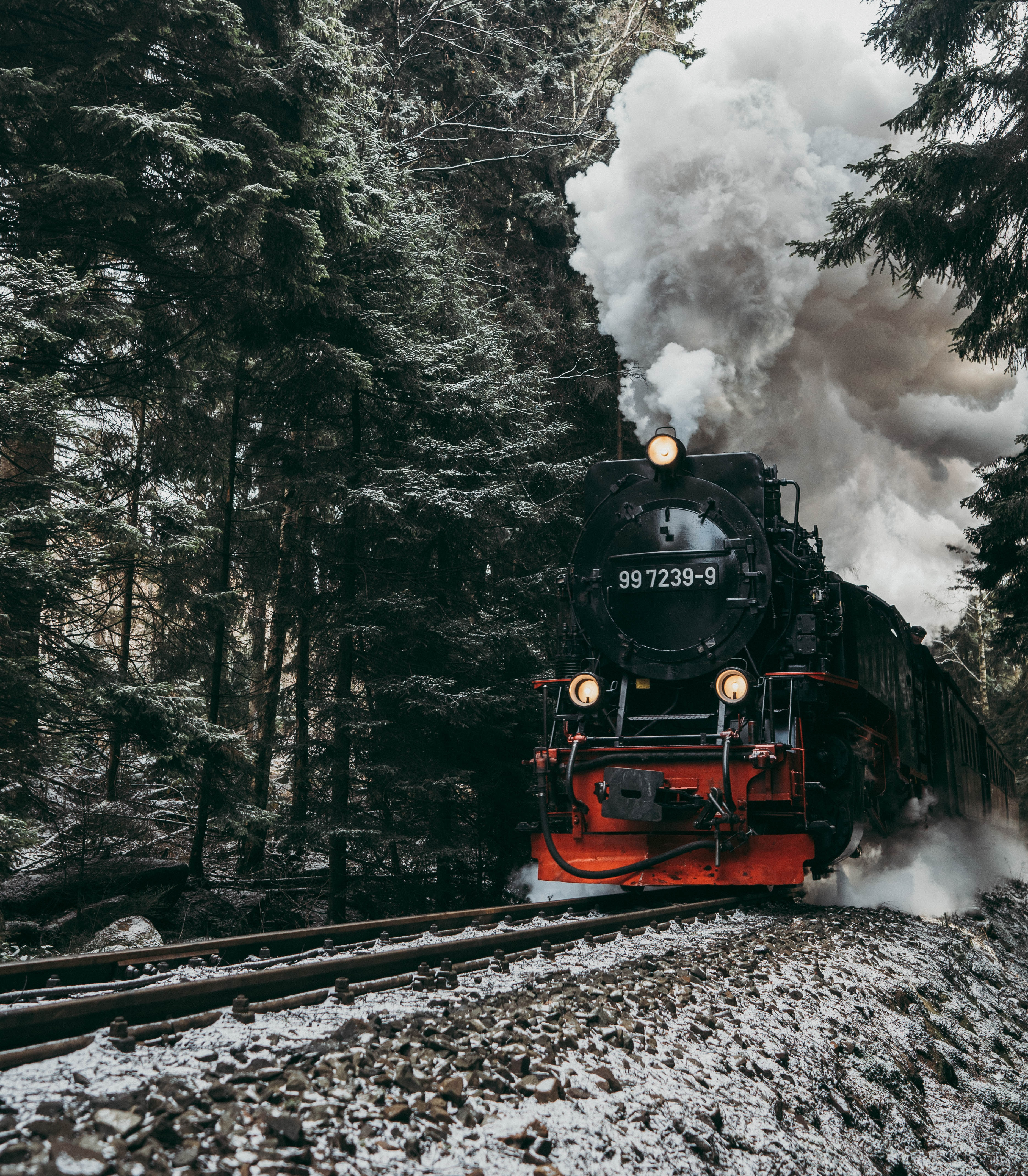 128624 Screensavers and Wallpapers Train for phone. Download Smoke, Miscellanea, Miscellaneous, Forest, Rails, Train, Locomotive, Steam Locomotive pictures for free