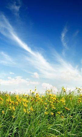4989 скачать обои Растения, Пейзаж, Трава, Небо - заставки и картинки бесплатно