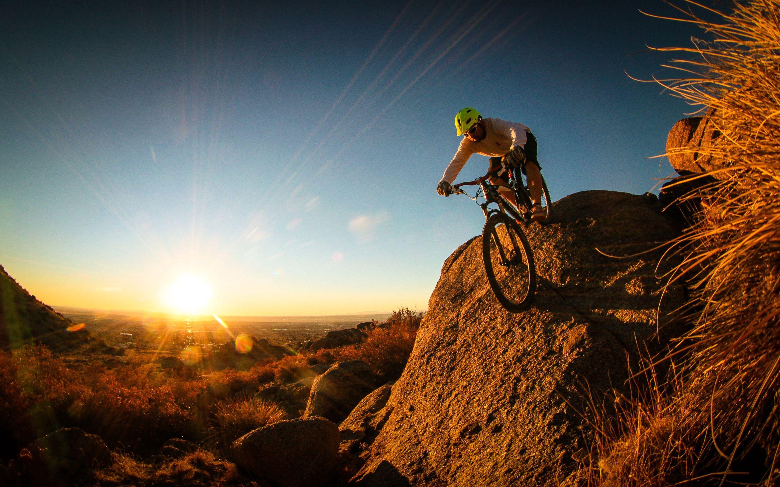 77770 Hintergrundbild herunterladen Sport, Mann, Radfahrer, Mountainbike - Bildschirmschoner und Bilder kostenlos