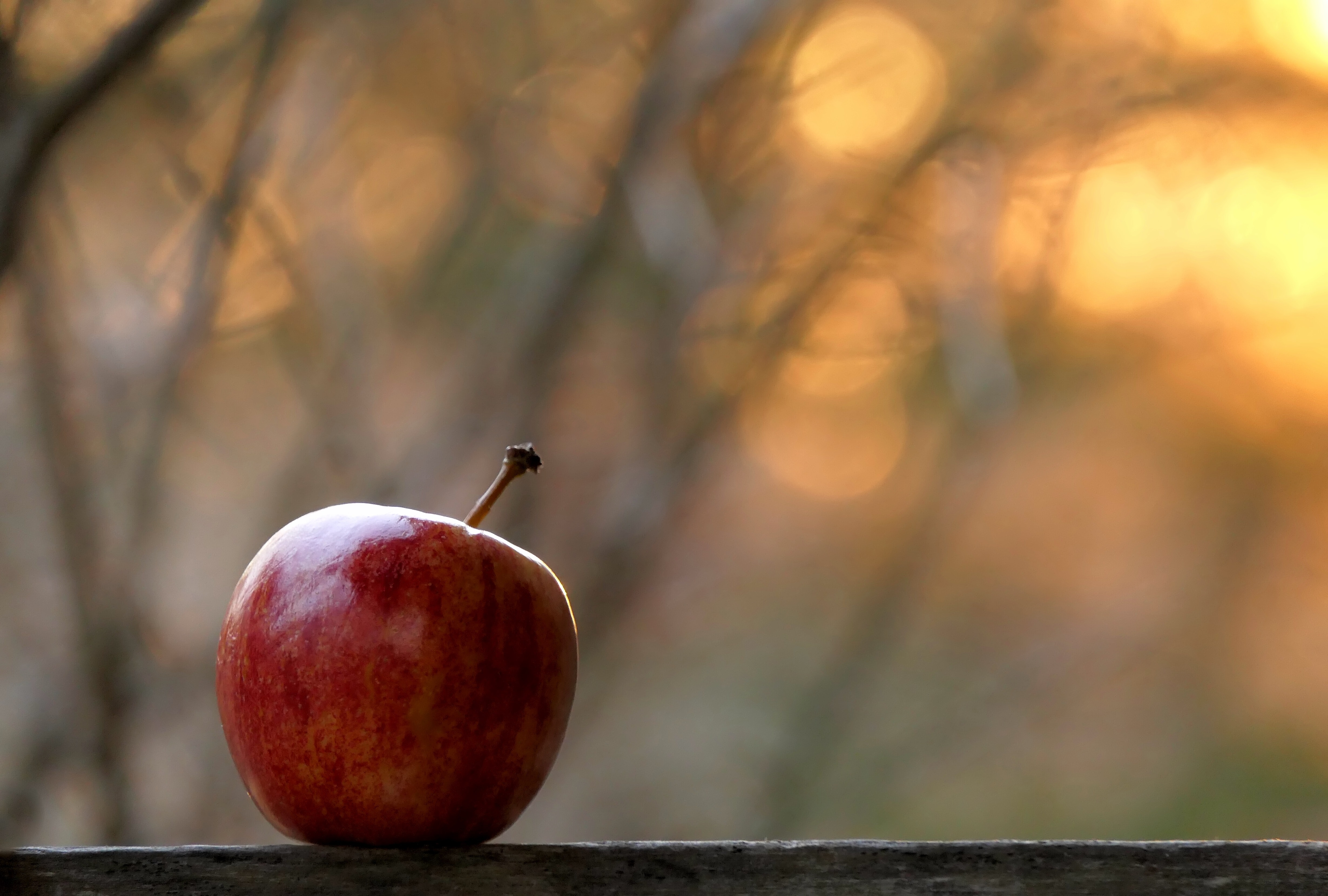 107672 Screensavers and Wallpapers Apple for phone. Download Food, Apple, Fruit, Focus pictures for free