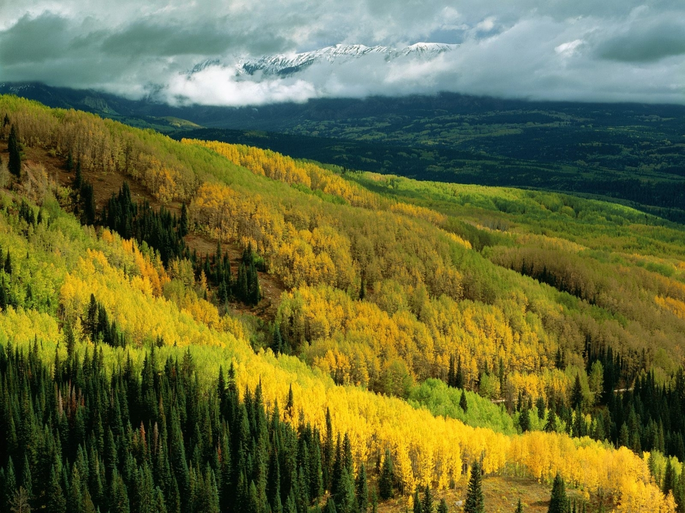 27410 download wallpaper Landscape, Trees, Mountains, Autumn, Clouds screensavers and pictures for free
