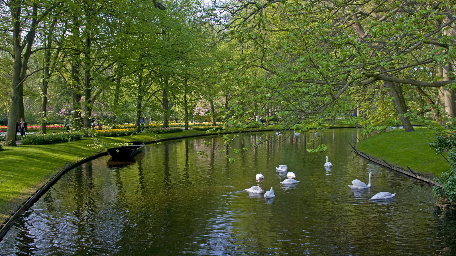 22358 download wallpaper Animals, Landscape, Birds, Rivers, Trees, Swans, Boats screensavers and pictures for free