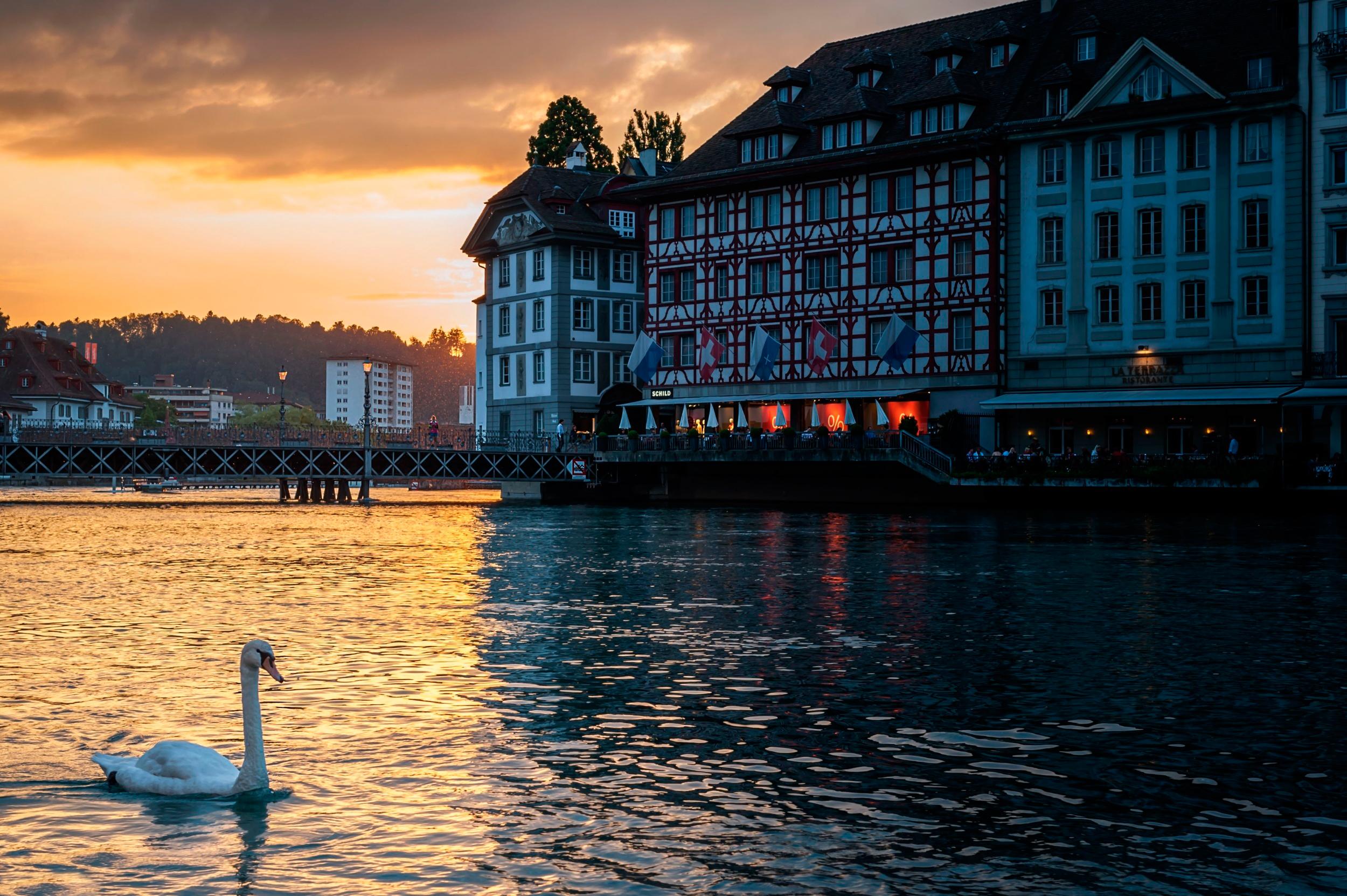 123124 скачать обои Швейцария, Города, Вечер, Здание, Лебедь, Люцерн - заставки и картинки бесплатно