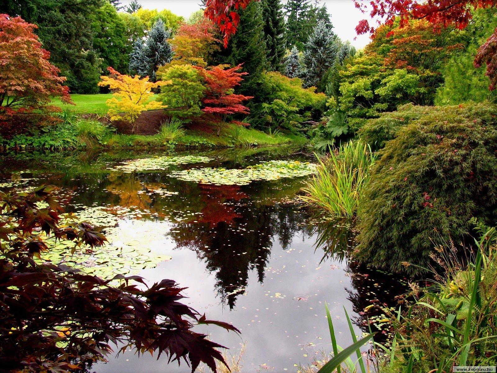 714 скачать обои Растения, Пейзаж, Вода - заставки и картинки бесплатно