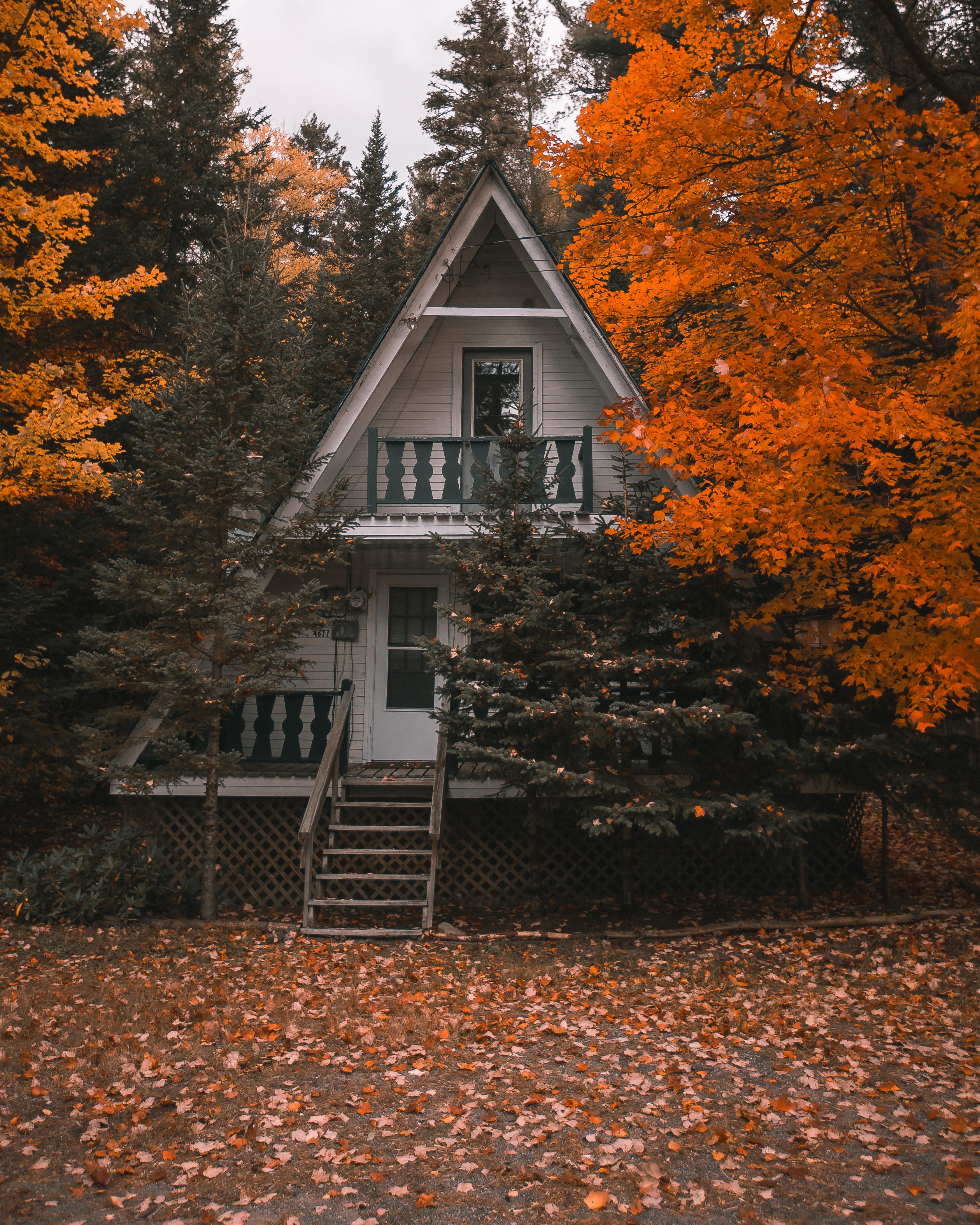 64812 скачать обои Осень, Уют, Домик, Природа, Деревья, Уединение - заставки и картинки бесплатно