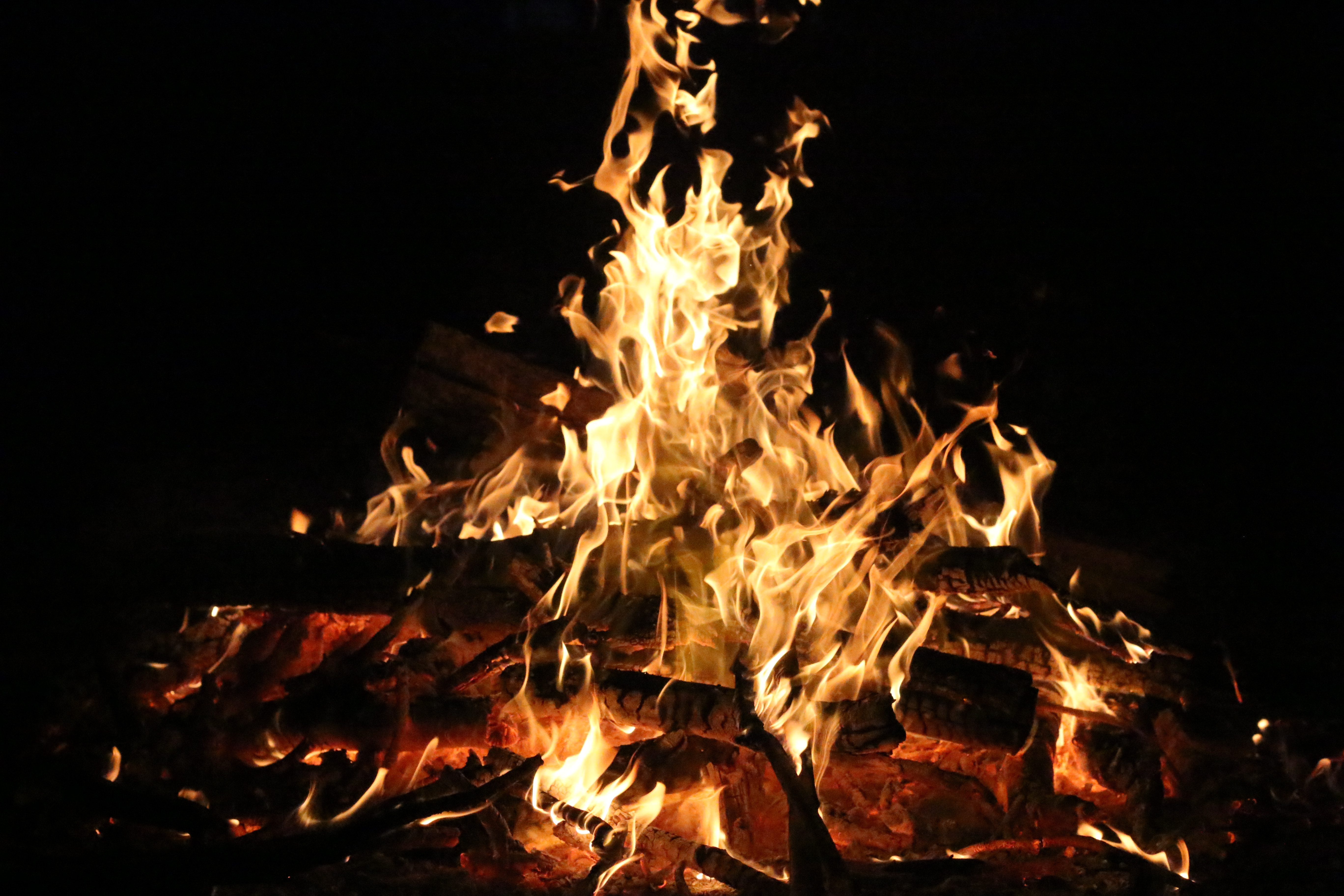 98107 Screensavers and Wallpapers Bonfire for phone. Download Fire, Bonfire, Coals, Dark, Flame, Firewood pictures for free