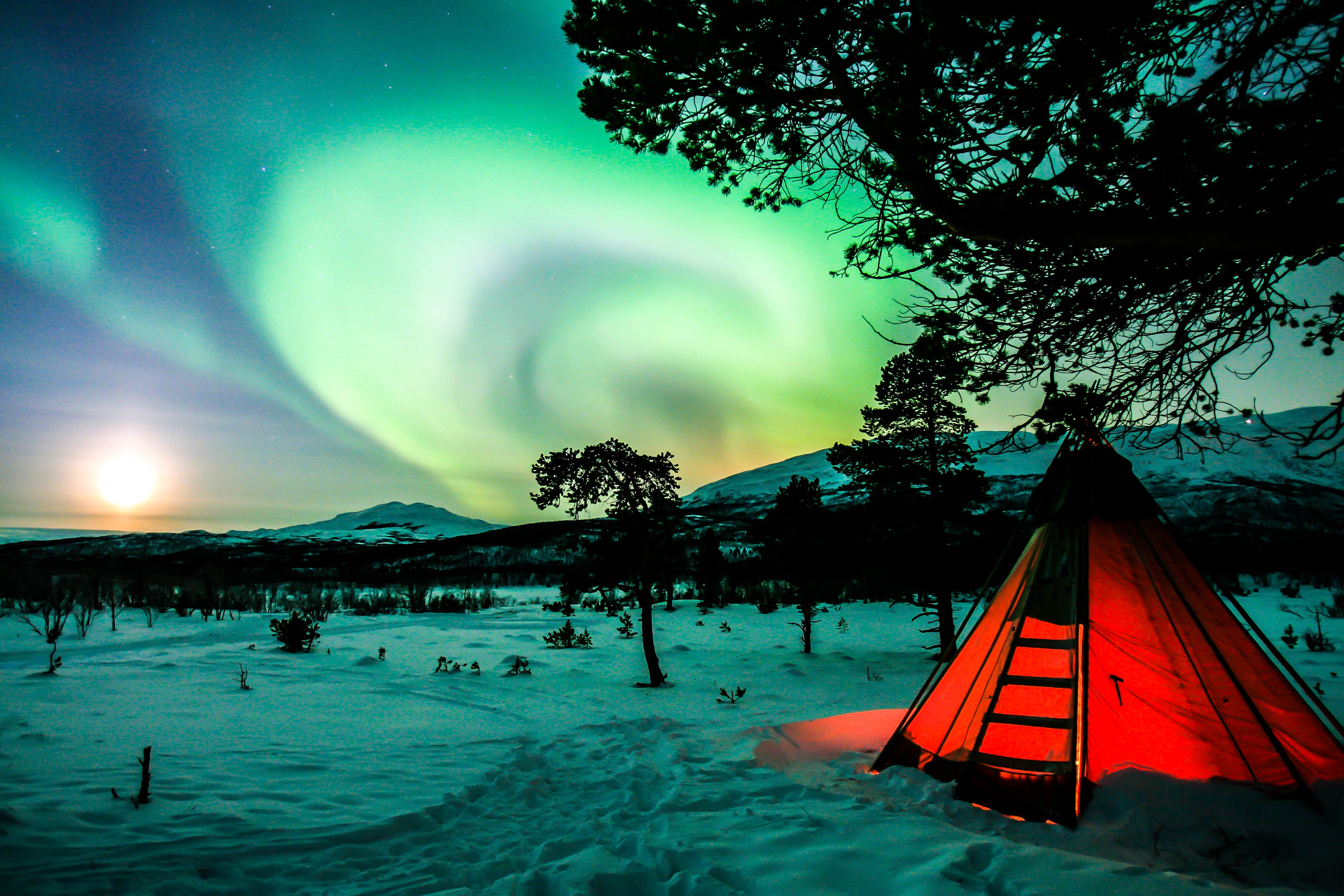 122040 download wallpaper Winter, Night, Dark, Northern Lights, Aurora Borealis, Tent, Camping, Campsite screensavers and pictures for free