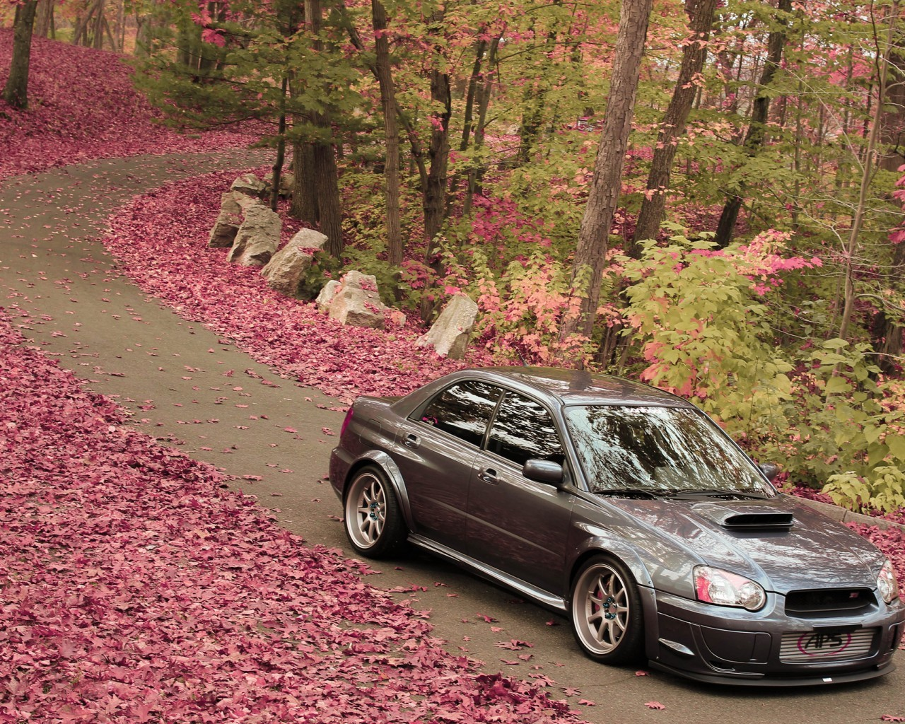 19846 download wallpaper Transport, Auto, Roads, Autumn, Leaves, Subaru screensavers and pictures for free