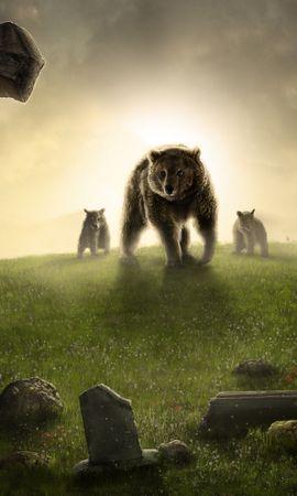 37304 baixar papel de parede Animais, Bears, Imagens - protetores de tela e imagens gratuitamente