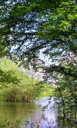 466 скачать обои Растения, Пейзаж, Река, Деревья - заставки и картинки бесплатно