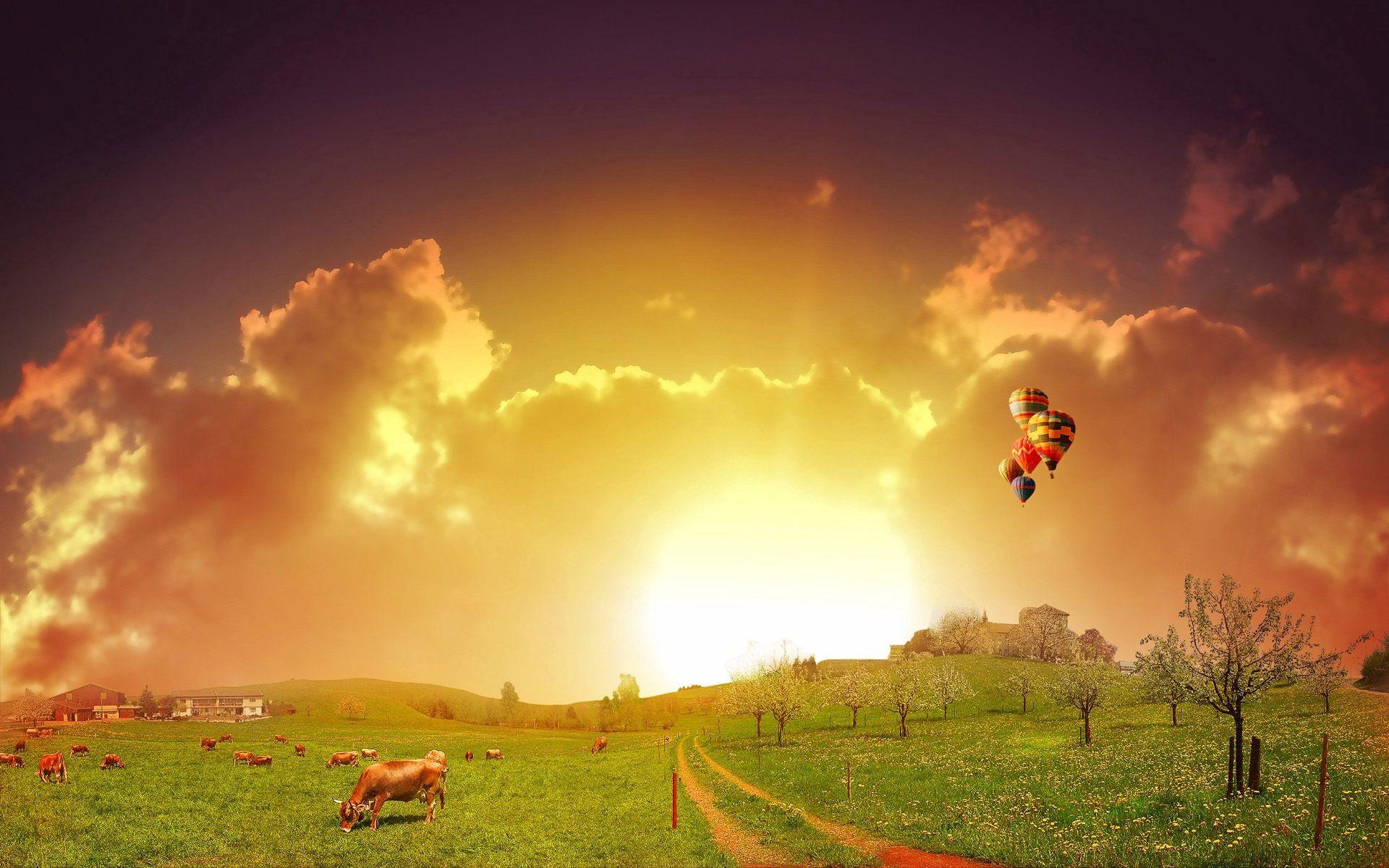 112123 скачать обои Природа, Луг, Дорога, Пастбище, Воздушные Шары, Коровы - заставки и картинки бесплатно