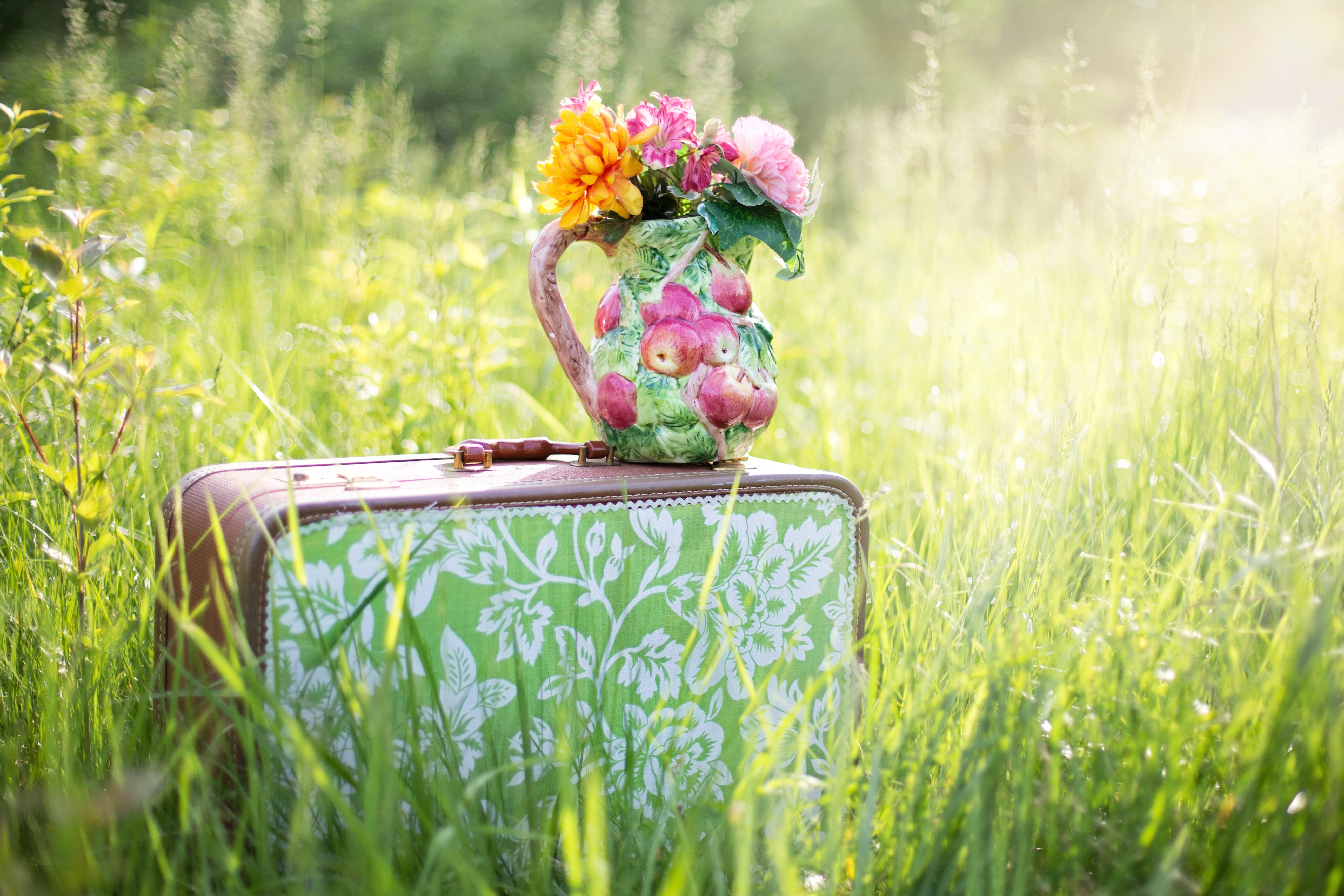 152993 скачать обои Букет, Цветы, Ваза, Чемодан - заставки и картинки бесплатно