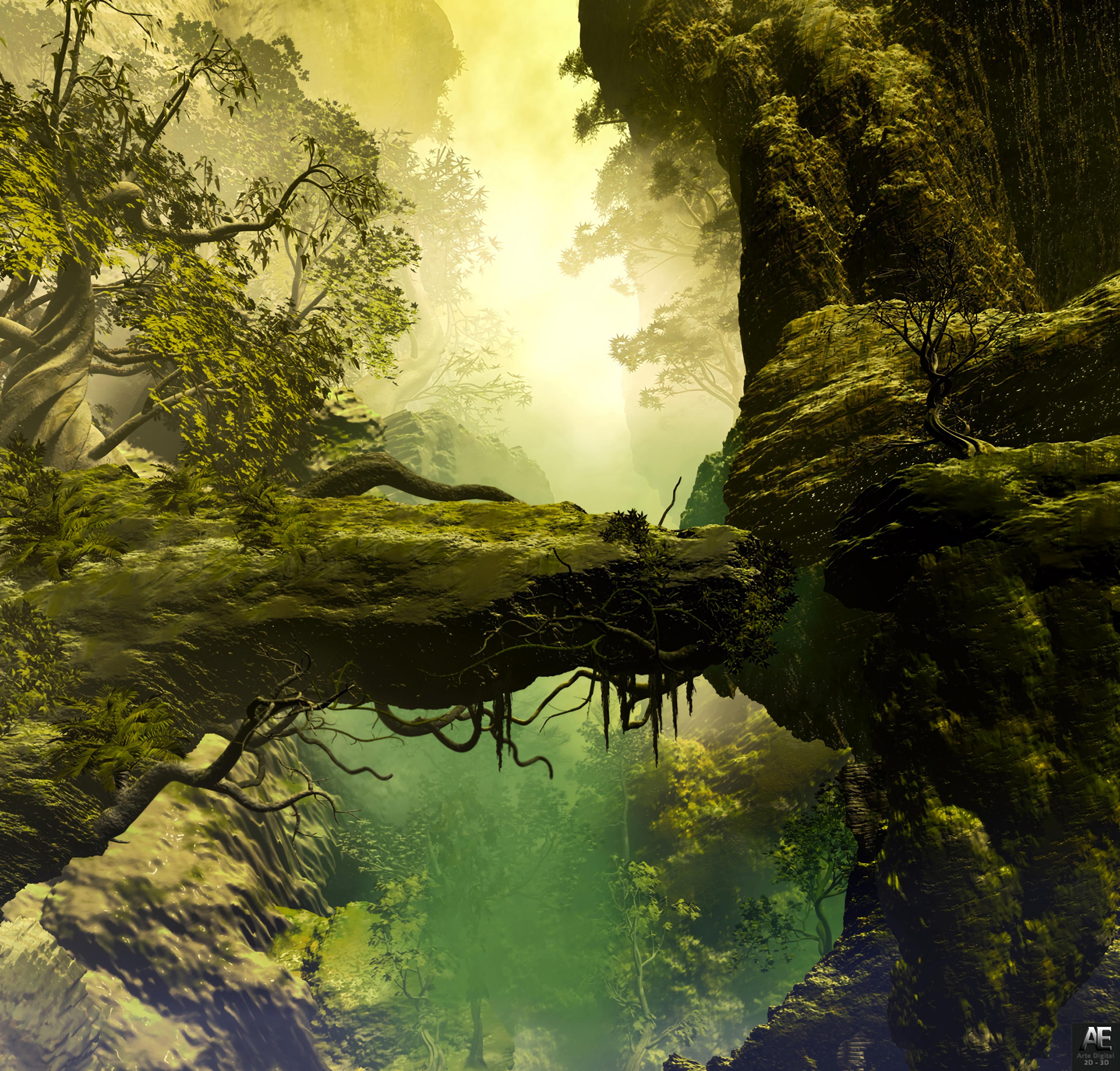 124377 обои 1080x1920 на телефон бесплатно, скачать картинки 3D, Пейзаж, Деревья, Камни, Скала, Туман, Корни, Живопись, Реализм 1080x1920 на мобильный