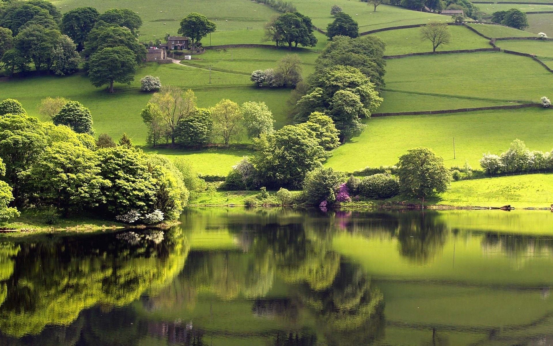 8932 скачать обои Пейзаж, Река, Деревья - заставки и картинки бесплатно