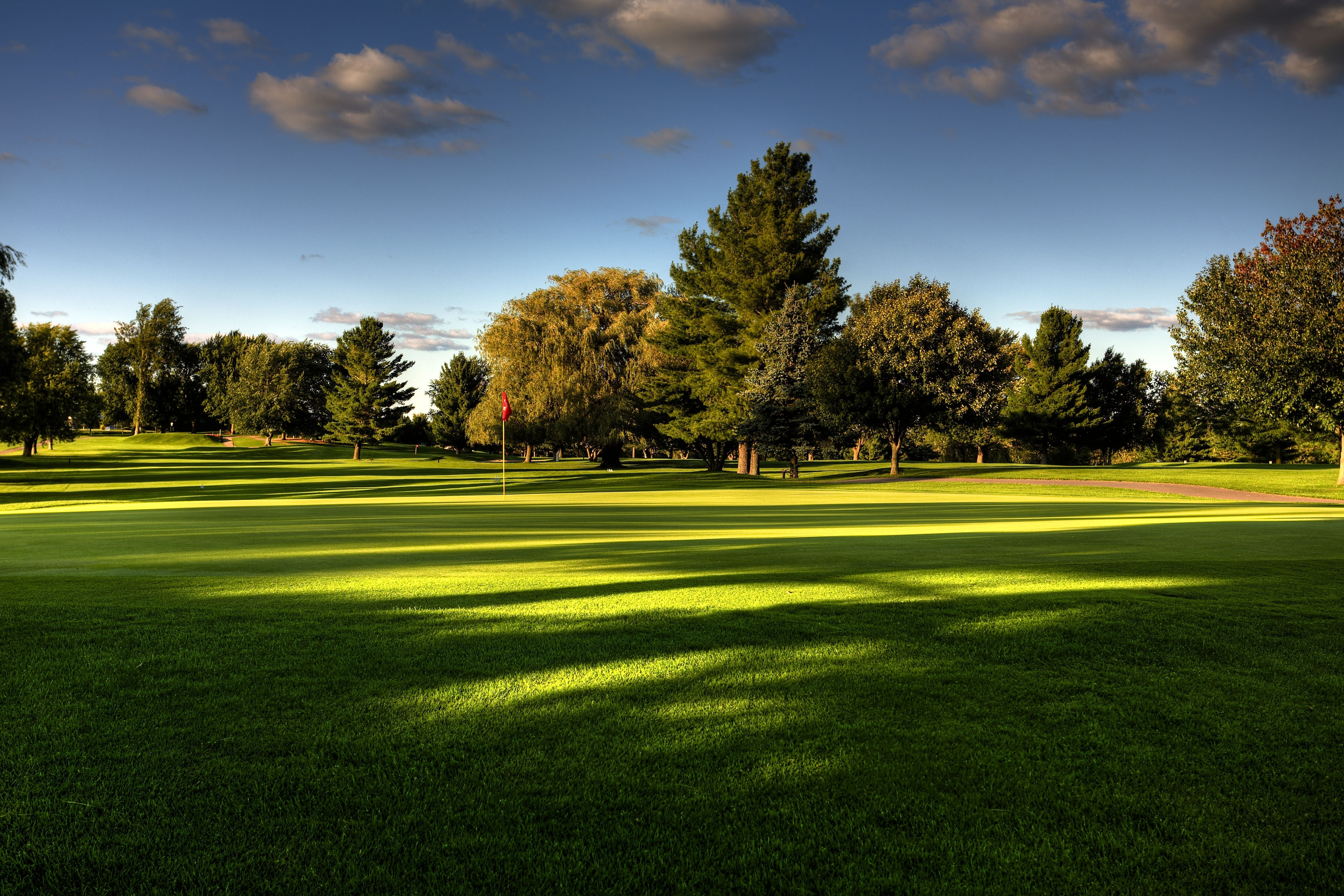 93689 download wallpaper Nature, Trees, Golf, Field, Lawn screensavers and pictures for free