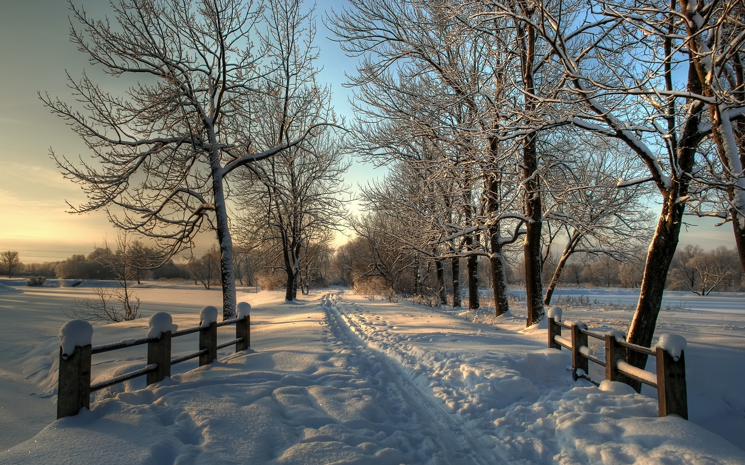 45080 download wallpaper Landscape, Winter, Snow screensavers and pictures for free