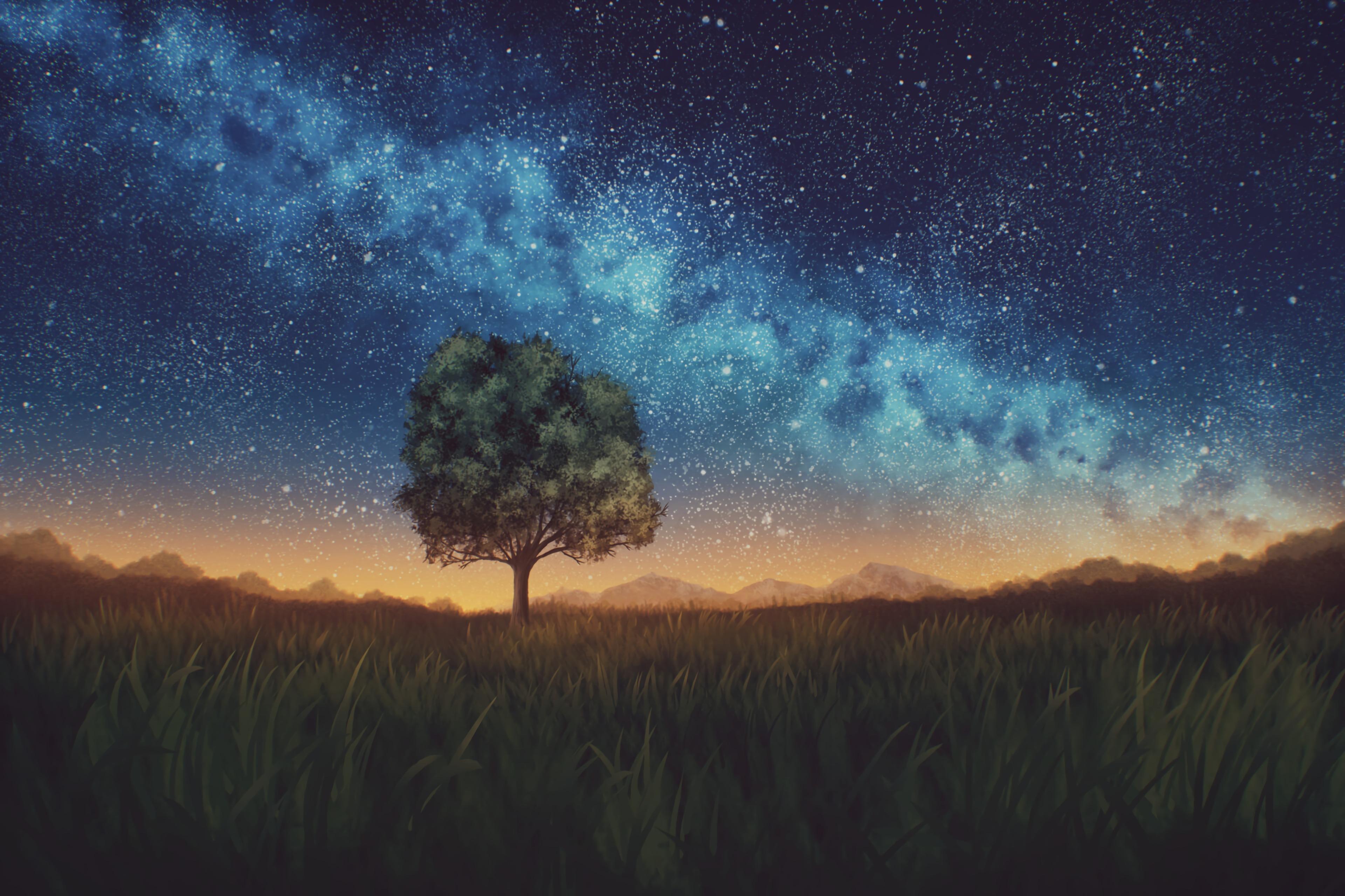 98613 Заставки и Обои Ночь на телефон. Скачать Ночь, Природа, Дерево, Темный, Звездное Небо, Лужайка картинки бесплатно