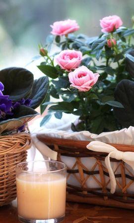 67396 Заставки і шпалери Фіалки на телефон. Завантажити Квіти, Фіалки, Цвітіння, Кошики, Корзина, Склянка, Напій, Напи́ток, Рози картинки безкоштовно