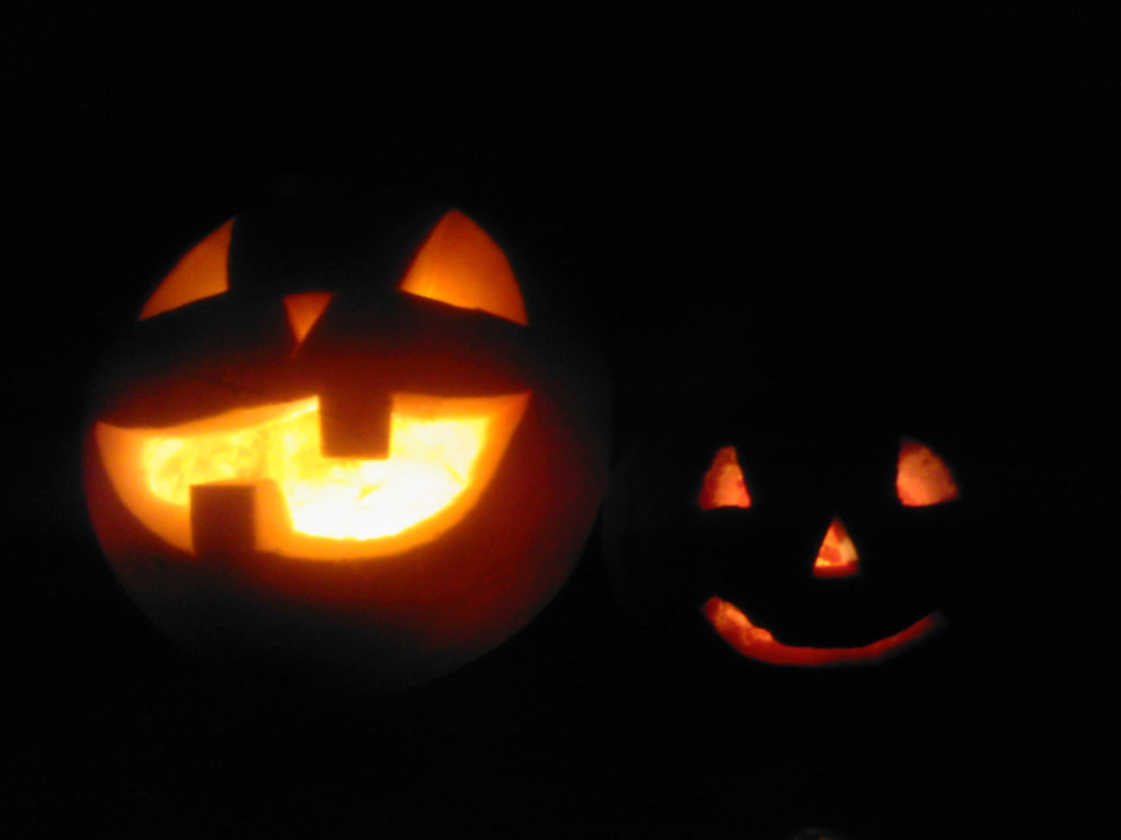 5987 download wallpaper Holidays, Halloween, Pumpkin screensavers and pictures for free