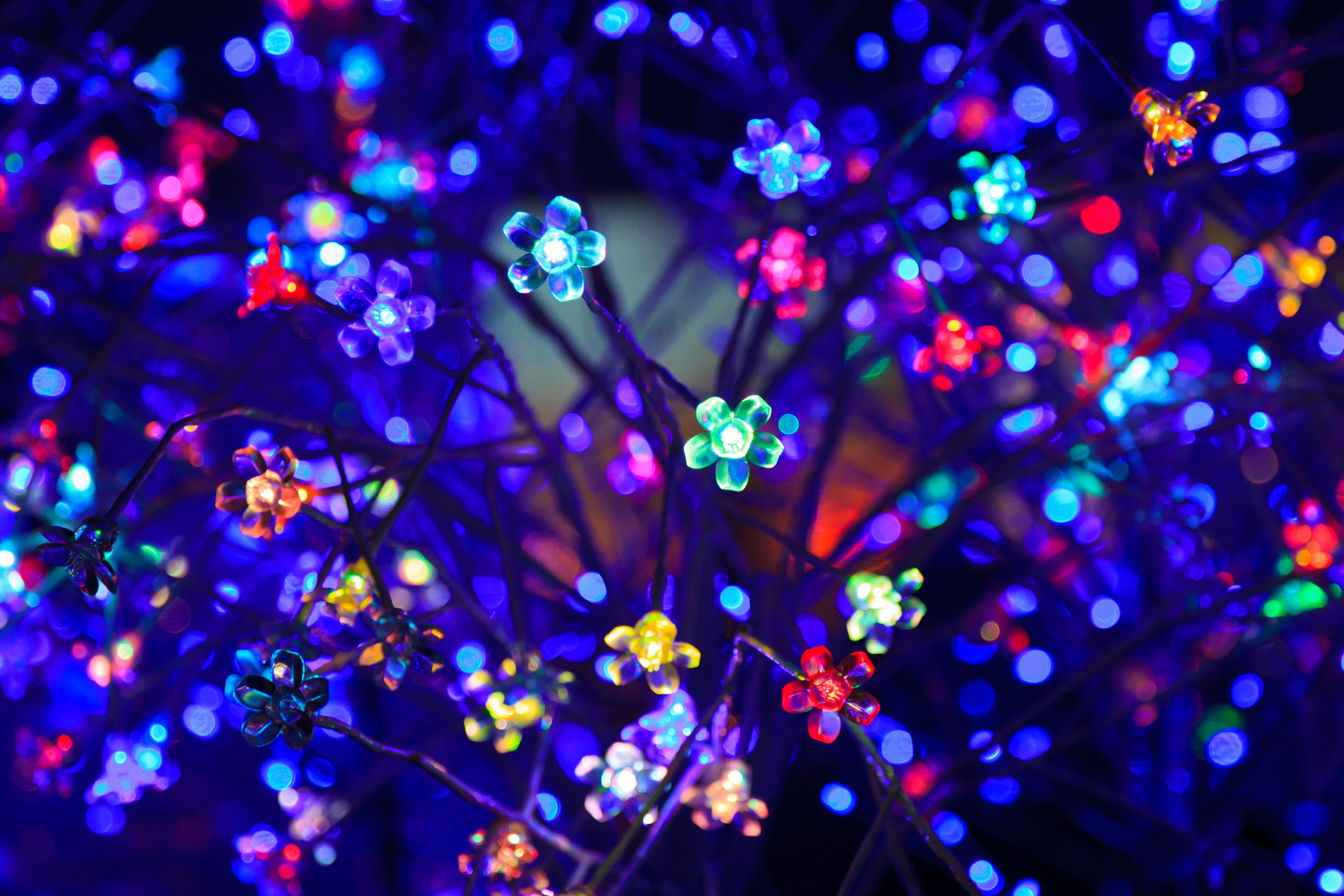 91199 download wallpaper Dark, Light Bulbs, Neon, Shine, Light, Lighting, Illumination, Glare, Bokeh, Boquet, Multicolored, Motley, Flowers screensavers and pictures for free