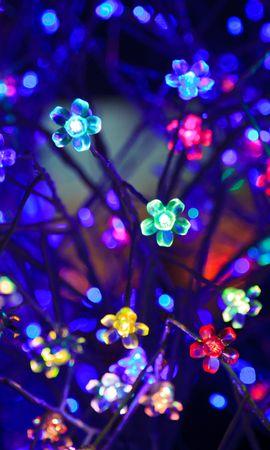 91199 скачать обои Темные, Лампочки, Неон, Свет, Освещение, Блики, Боке, Разноцветный, Цветы - заставки и картинки бесплатно