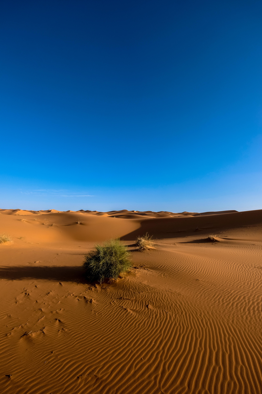 51734 Заставки и Обои Пустыня на телефон. Скачать Пустыня, Природа, Небо, Песок, Сахара картинки бесплатно