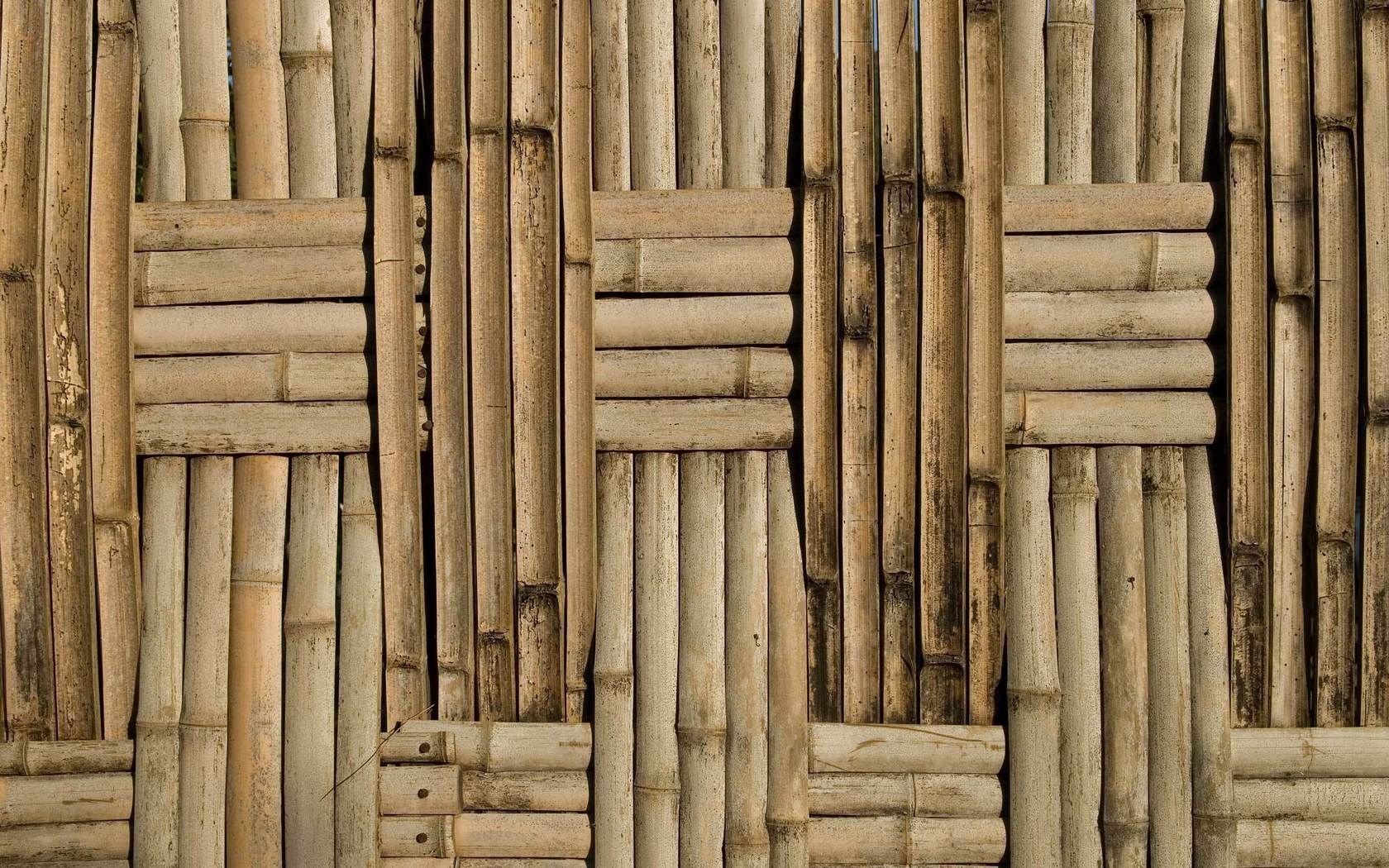 97419 download wallpaper Textures, Texture, Bamboo, Background, Surface, Planks, Board screensavers and pictures for free