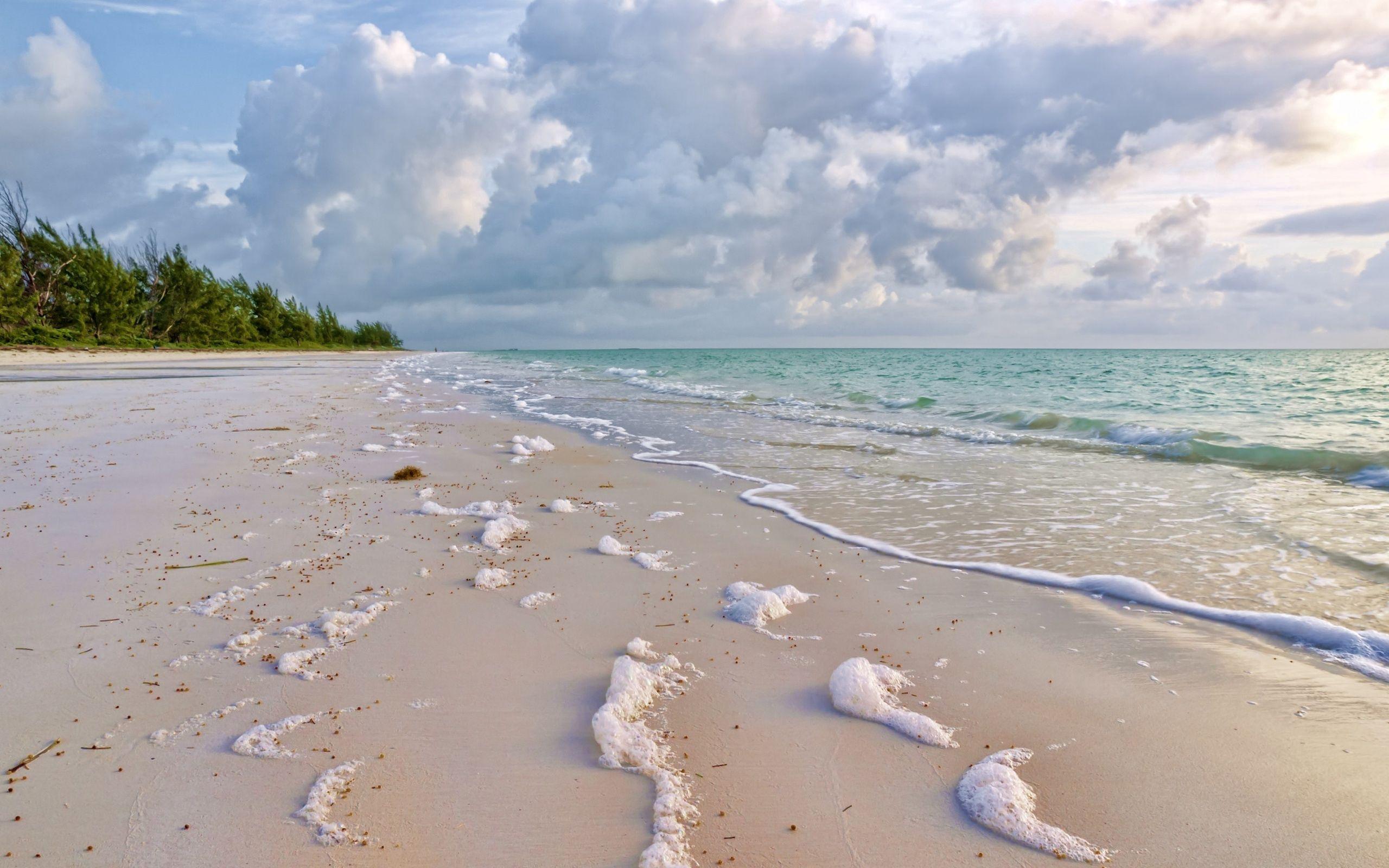 91221 Заставки и Обои Песок на телефон. Скачать Песок, Природа, Море, Побережье, Зелень, Пена, Прибой картинки бесплатно