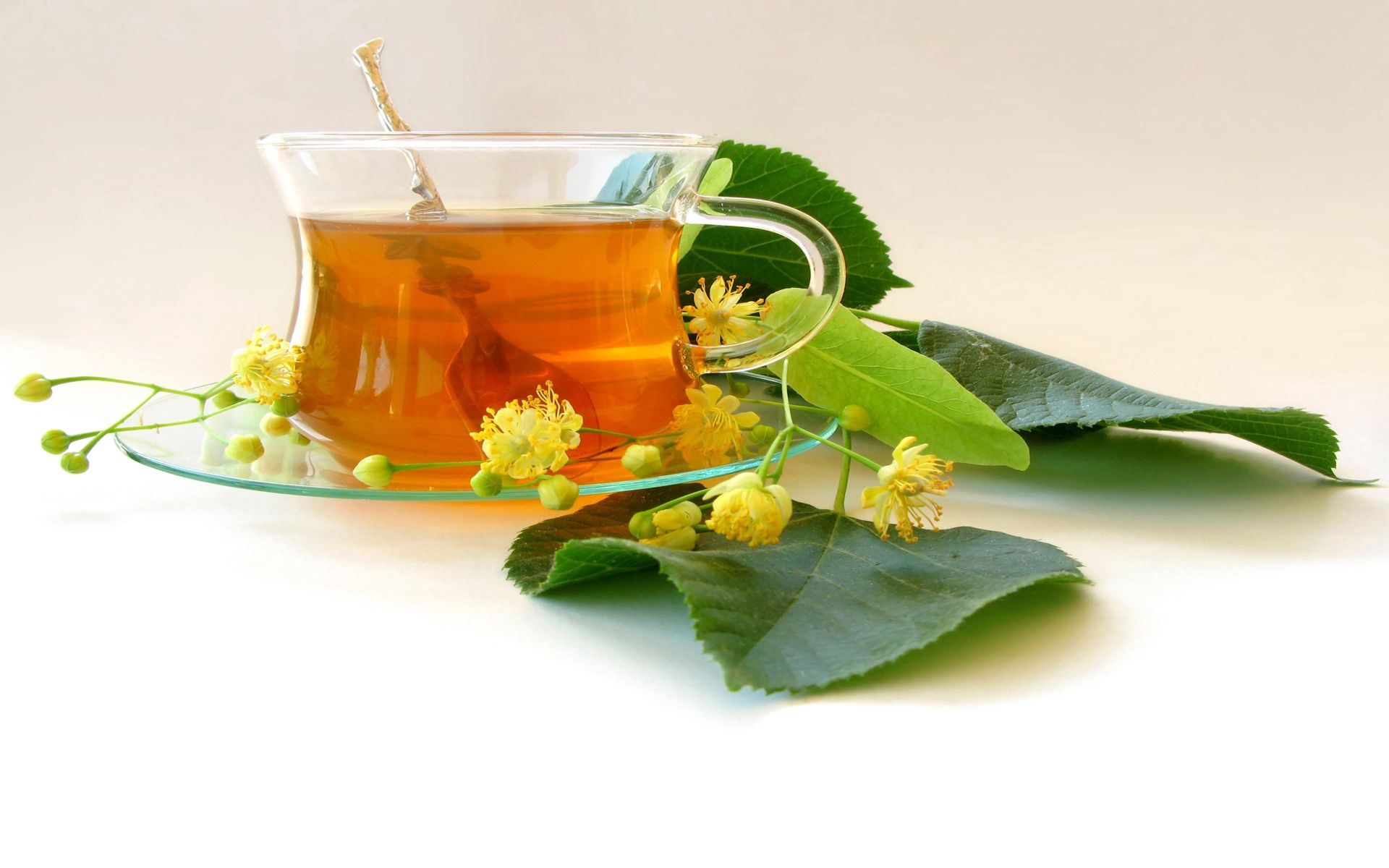 71941 download wallpaper Food, Tea, Cup, Leaves, Plate screensavers and pictures for free