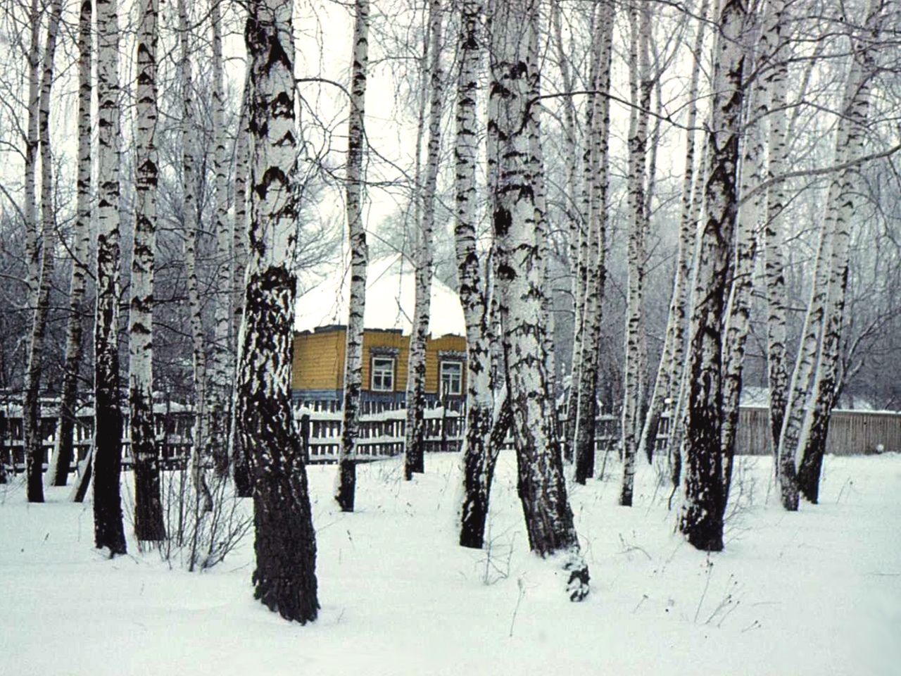 360 download wallpaper Landscape, Winter, Houses, Trees screensavers and pictures for free