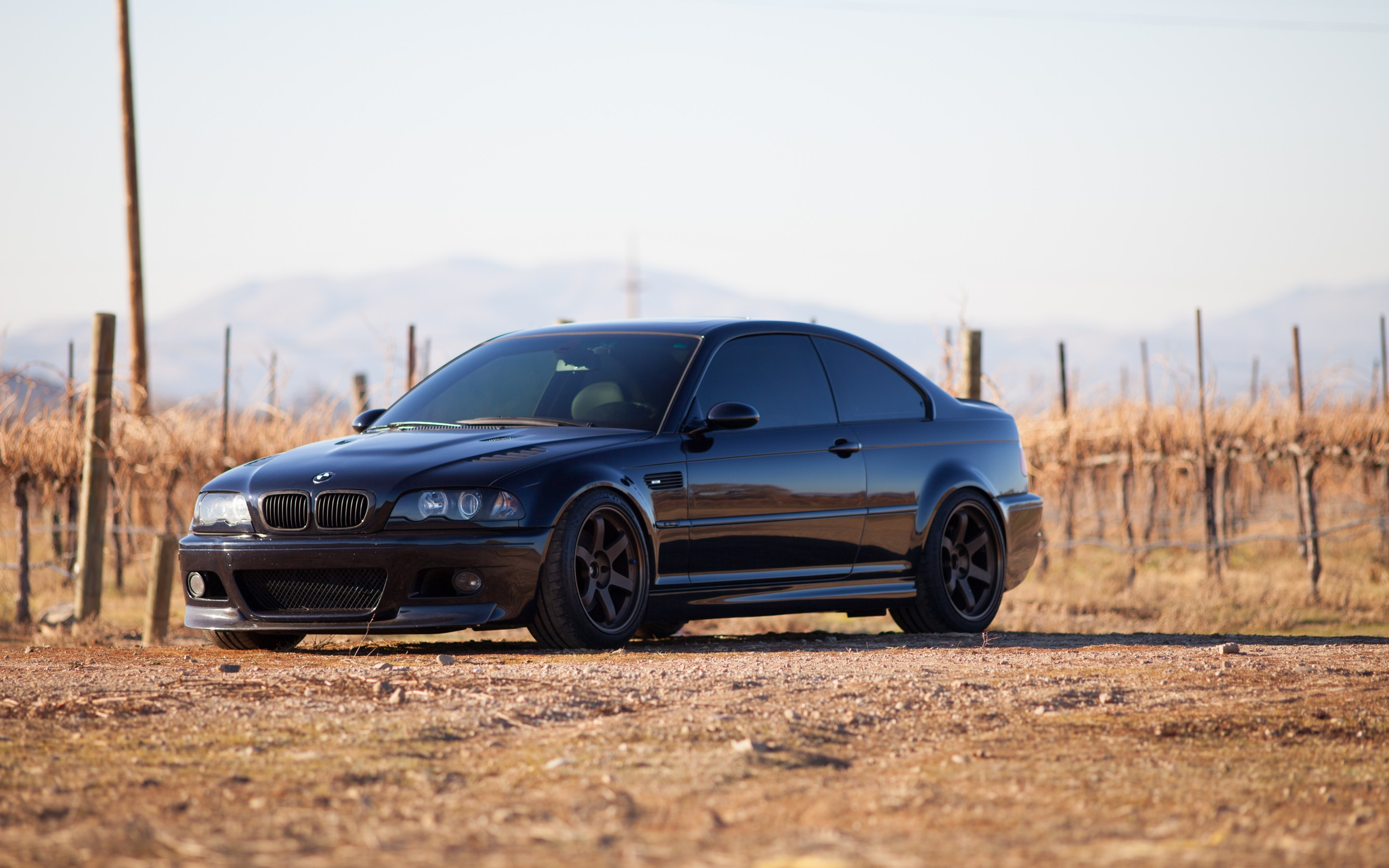 58376 free wallpaper 1125x2436 for phone, download images Bmw, Cars, Side View, E46, M3 1125x2436 for mobile