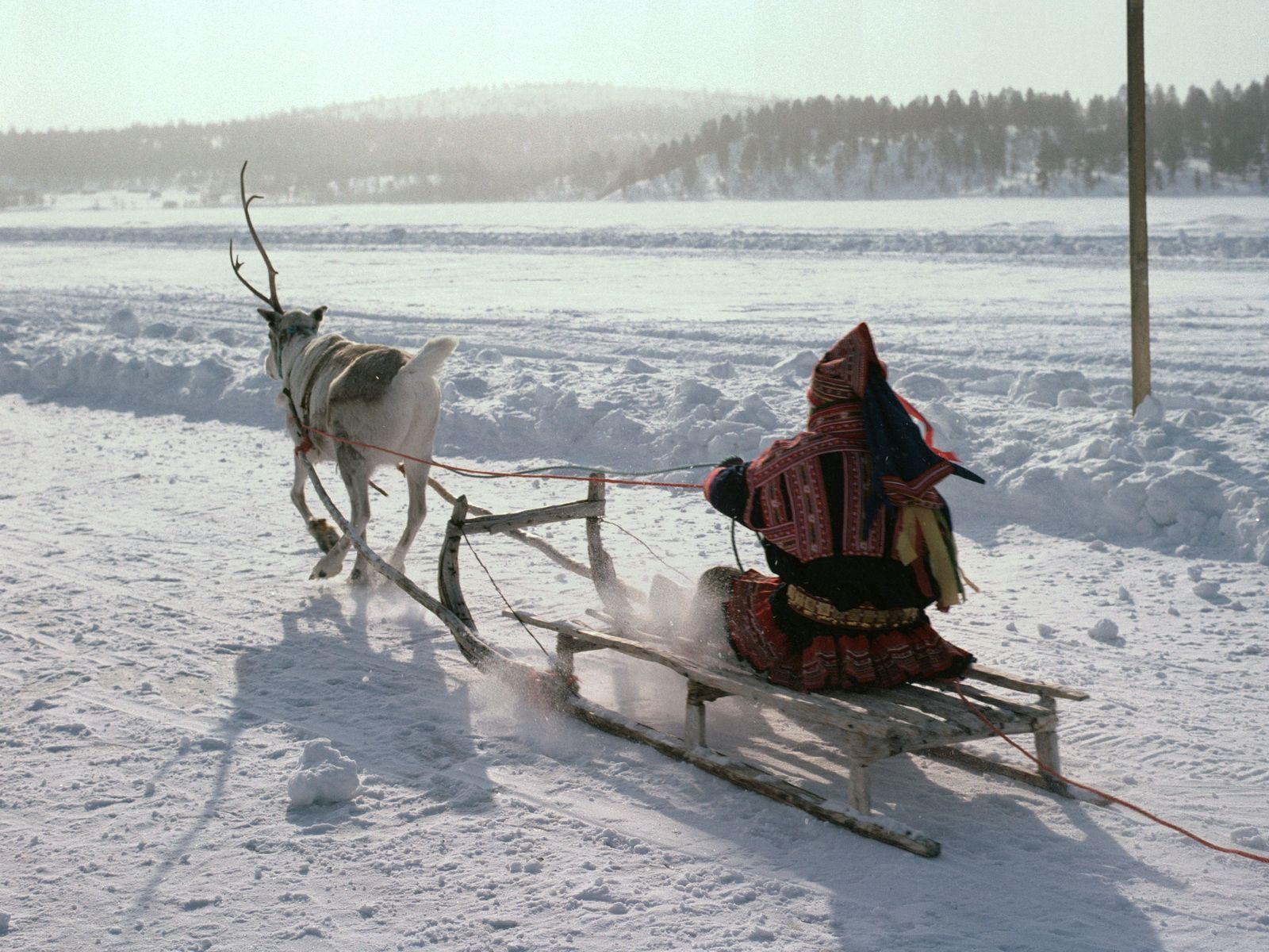 125589 descargar fondo de pantalla Naturaleza, Polo Norte, Esquimal, Trineo, Ciervo, Transporte, Nieve: protectores de pantalla e imágenes gratis