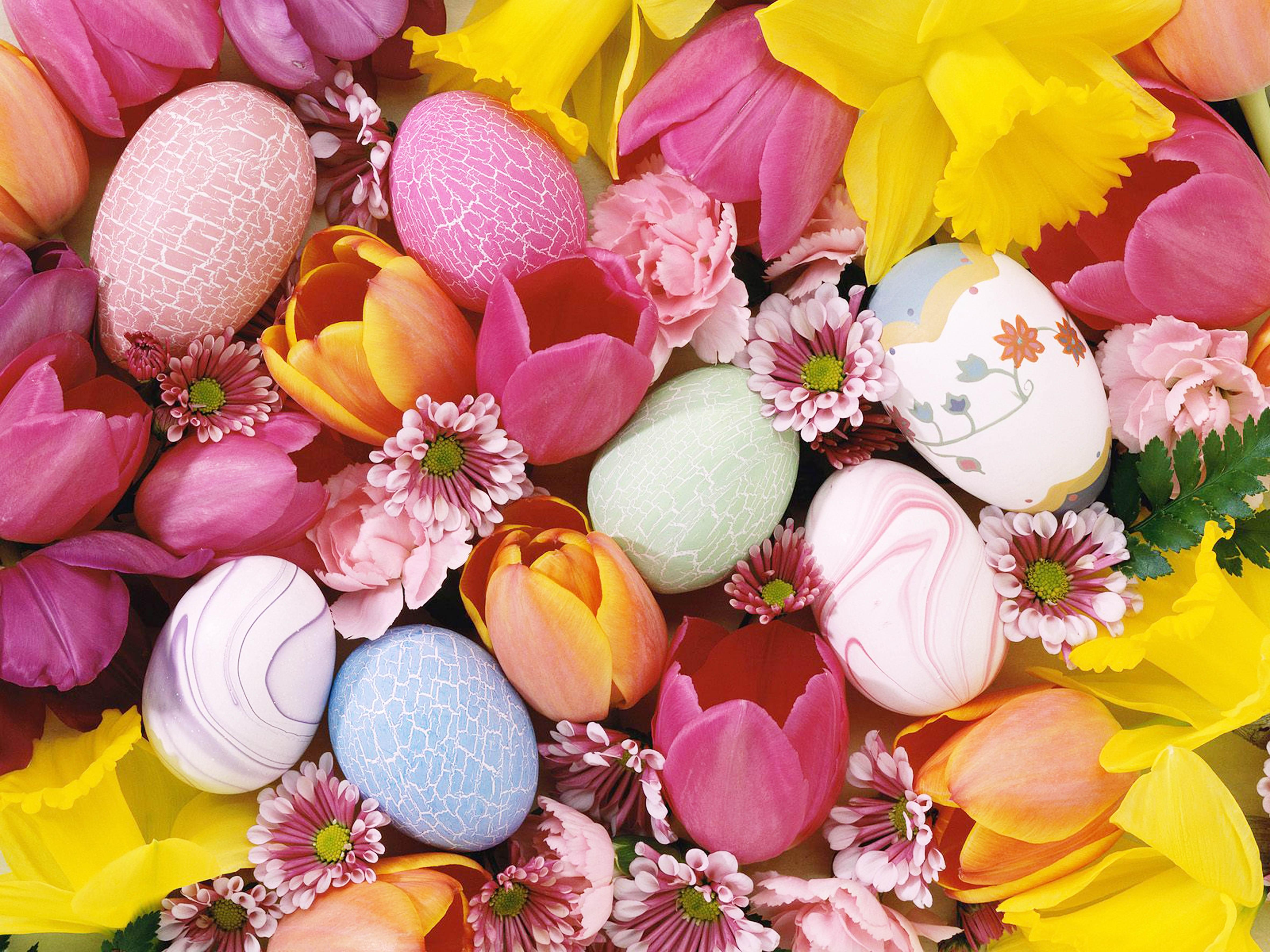 95399 descargar fondo de pantalla Comida, Fondo, Tulipanes, Pascua, Huevos: protectores de pantalla e imágenes gratis