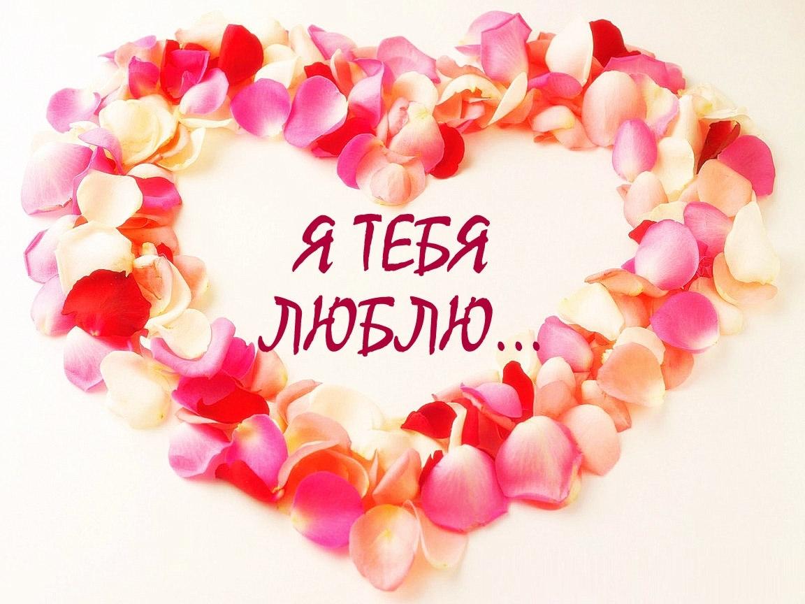 4297 économiseurs d'écran et fonds d'écran Saint Valentin sur votre téléphone. Téléchargez Saint Valentin, Fêtes, Cœurs, Amour images gratuitement